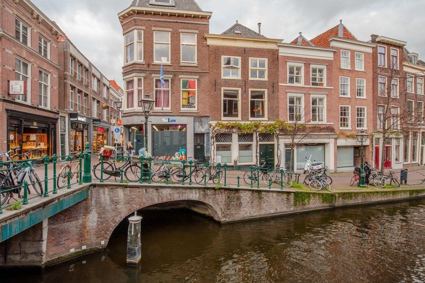 Oude Rijn 2, Leiden foto-6 blur