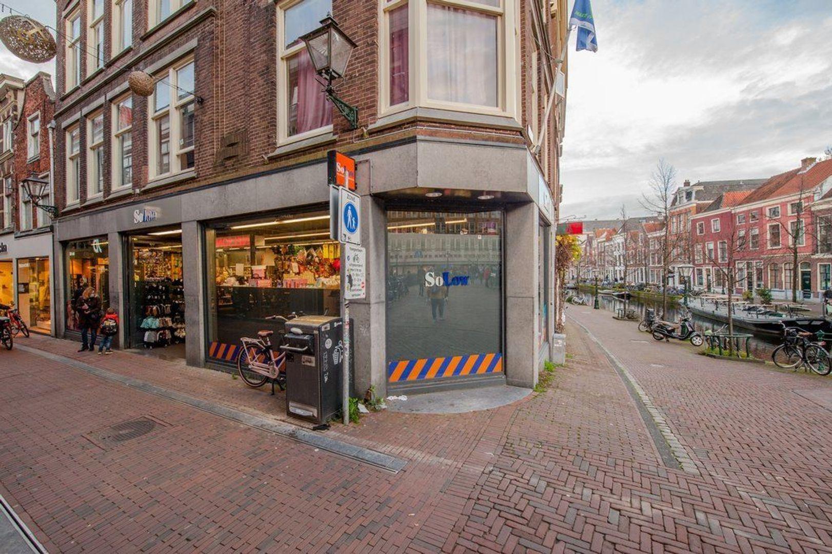 Oude Rijn 2, Leiden foto-56 blur