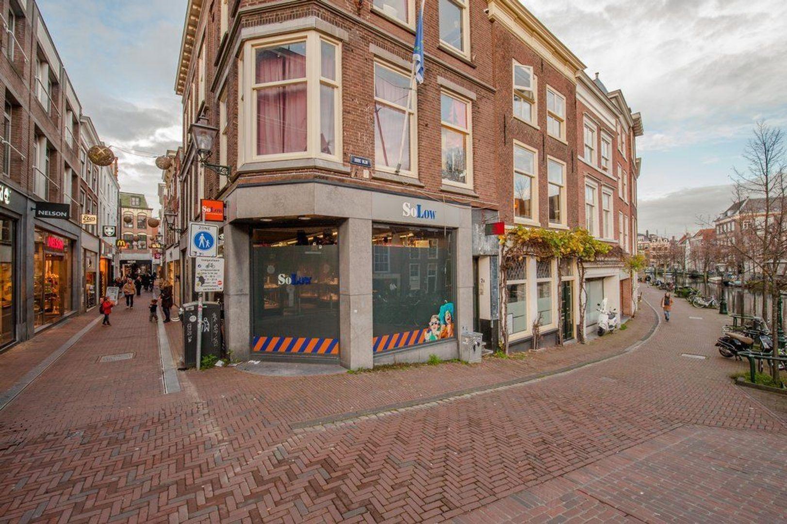 Oude Rijn 2, Leiden foto-55 blur