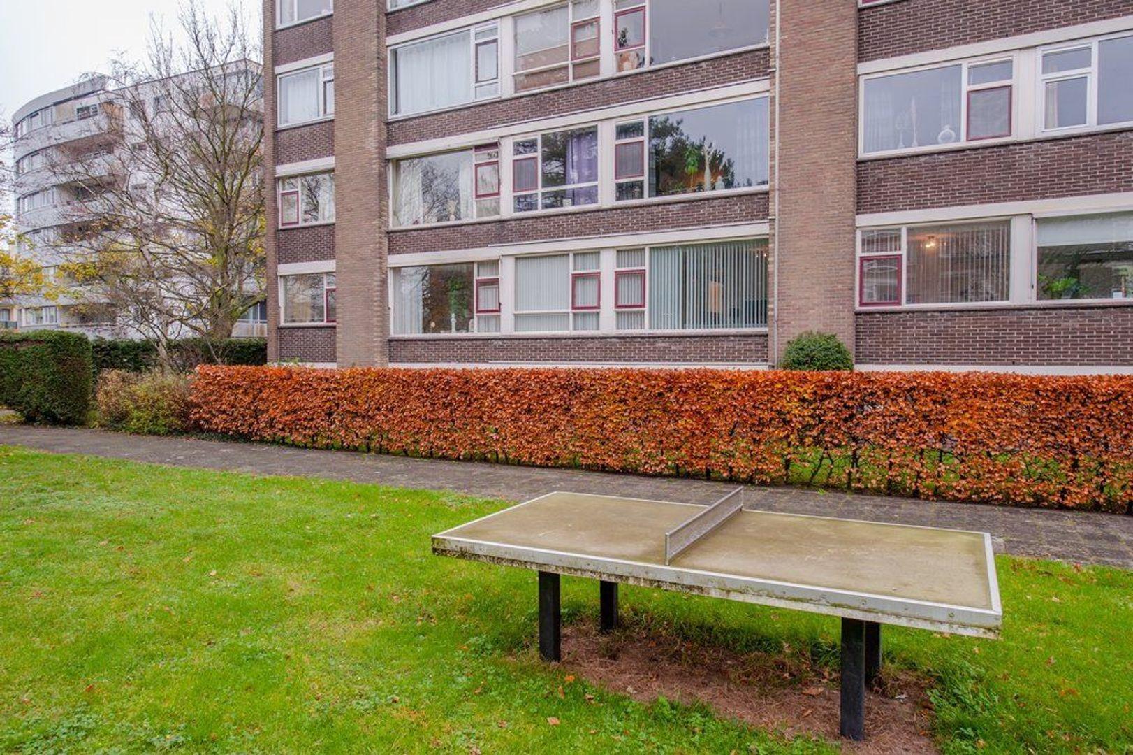 Mozartstraat 53, Leiden foto-36 blur