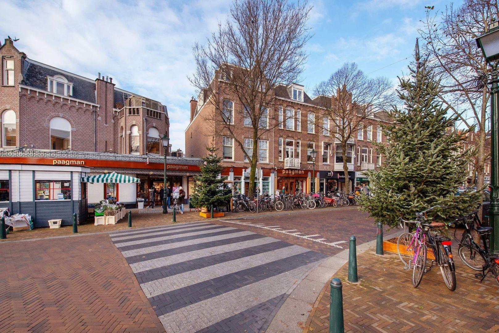 Van Loostraat 144, Den Haag foto-28 blur