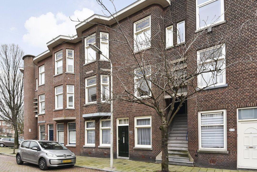 Willem van Outhoornstraat 101, Den Haag