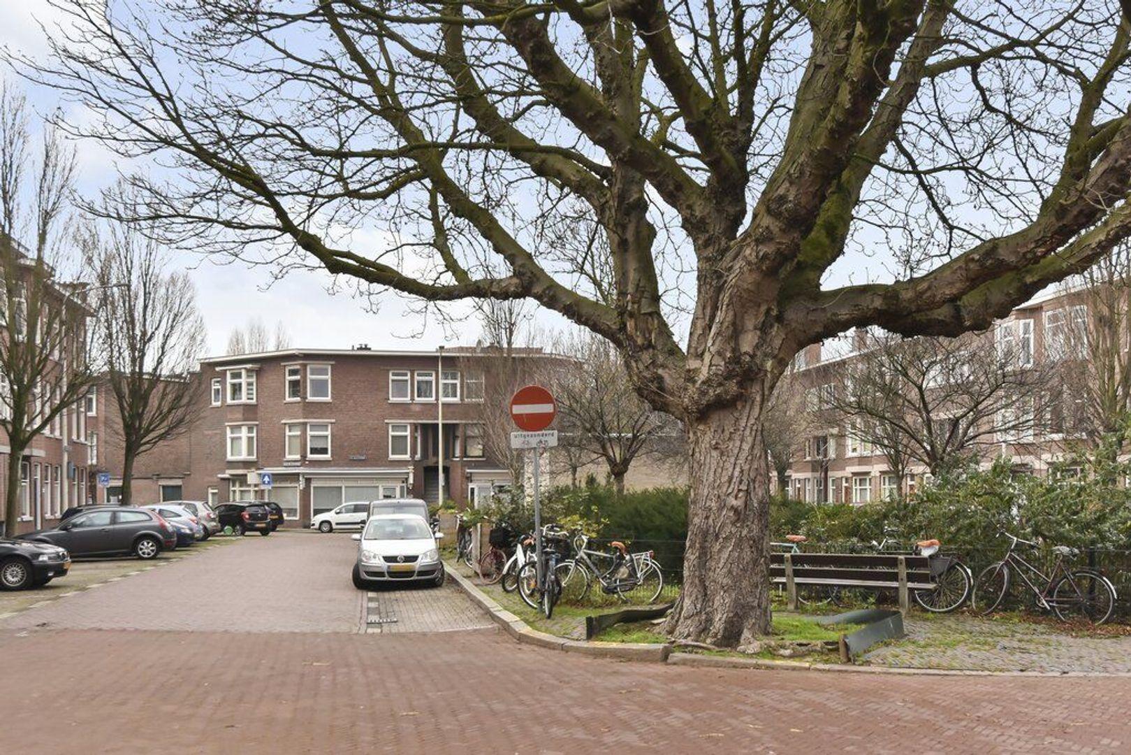 Willem van Outhoornstraat 101, Den Haag foto-29 blur