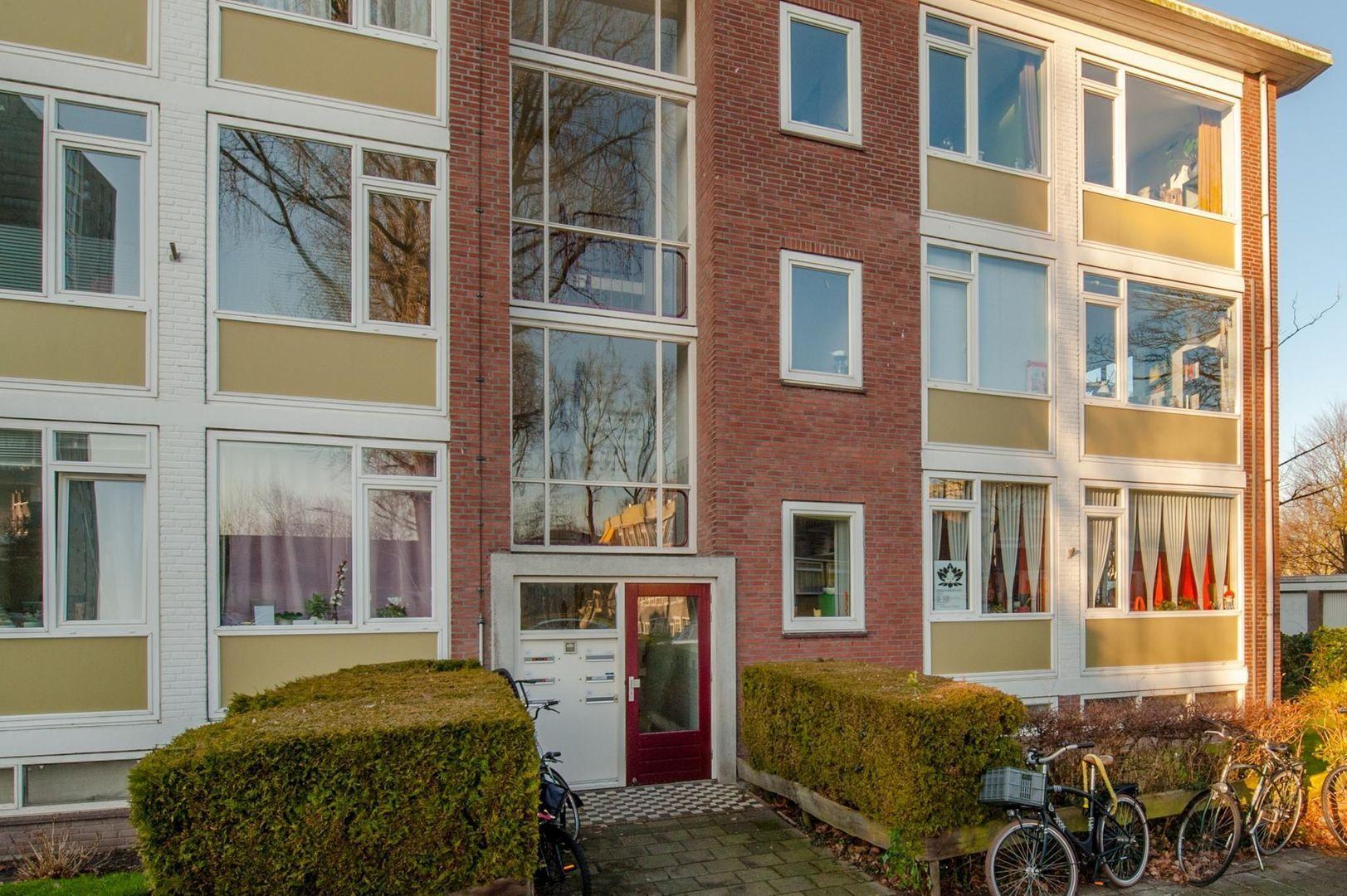 Eduard van Beinumstraat 33, Leiden foto-6 blur