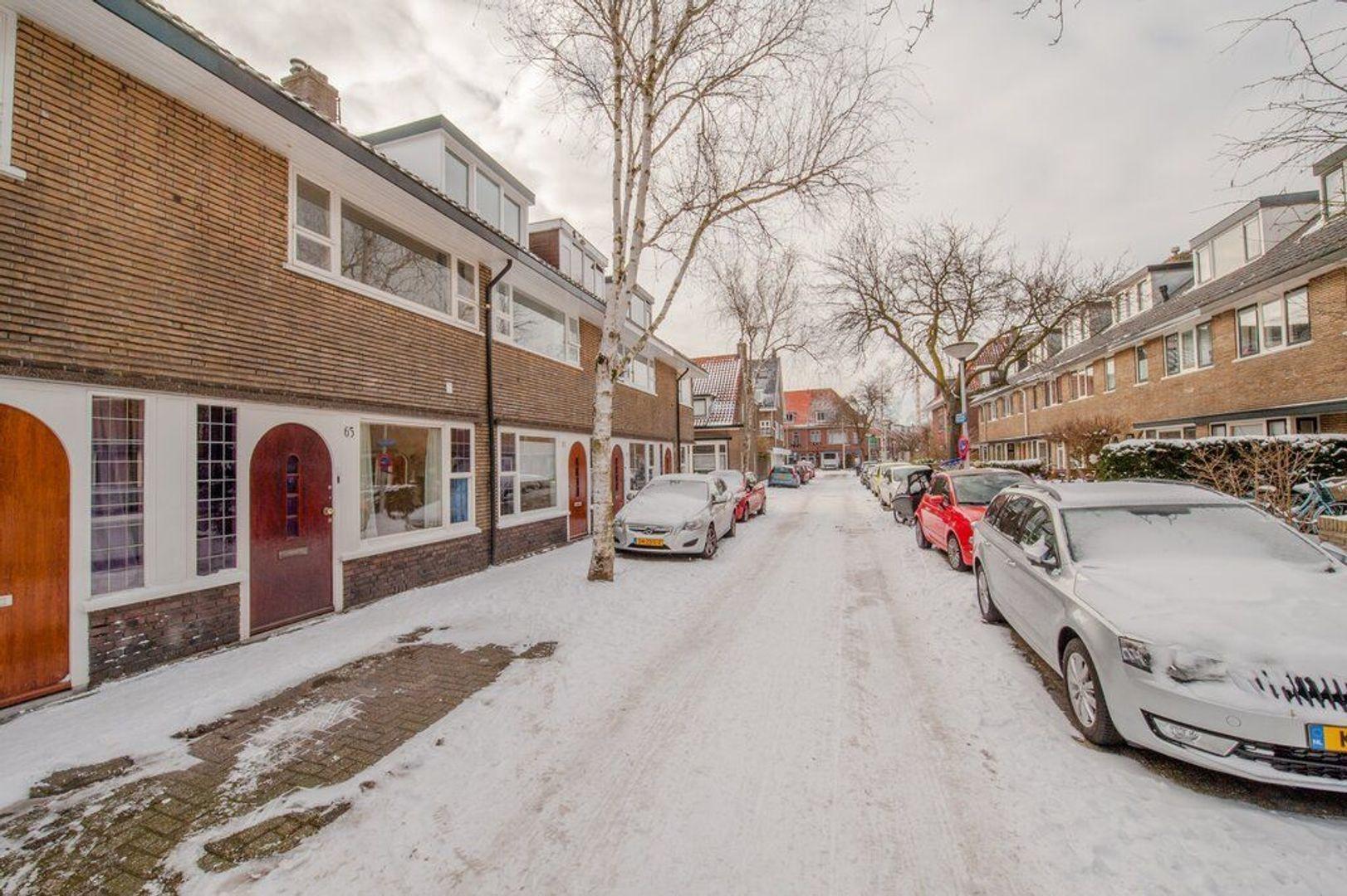 Hugo de Vriesstraat 65, Leiden foto-43 blur