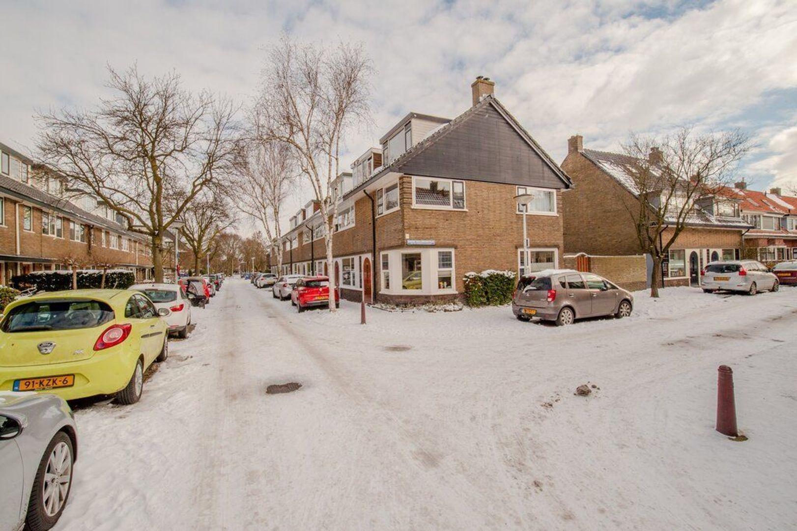 Hugo de Vriesstraat 65, Leiden foto-49 blur