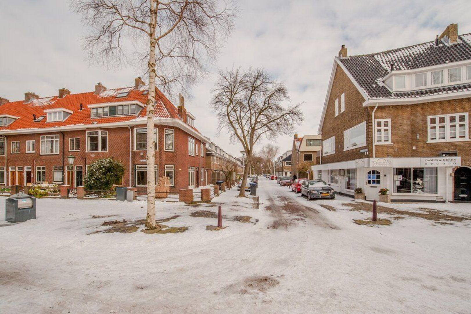 Hugo de Vriesstraat 65, Leiden foto-50 blur