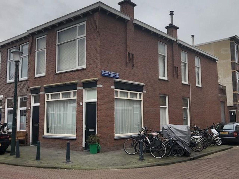 Frederik Ruyschstraat 17 19, Den Haag foto-0 blur