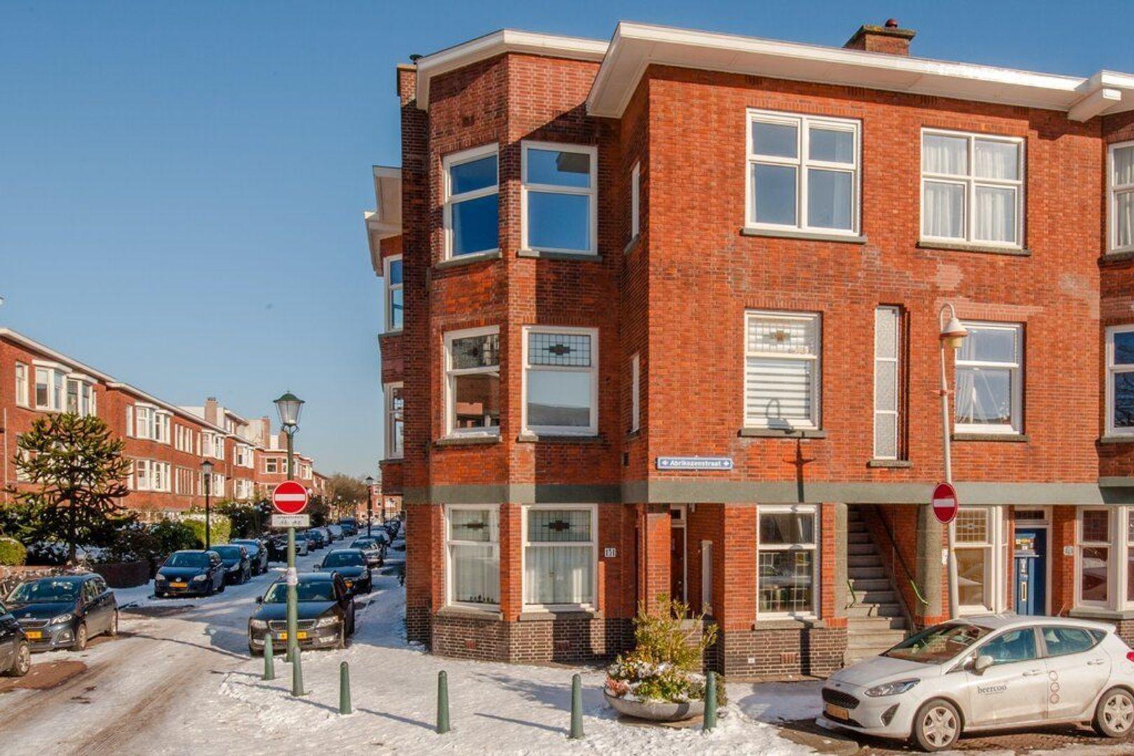 Abrikozenstraat 127, Den Haag foto-20 blur