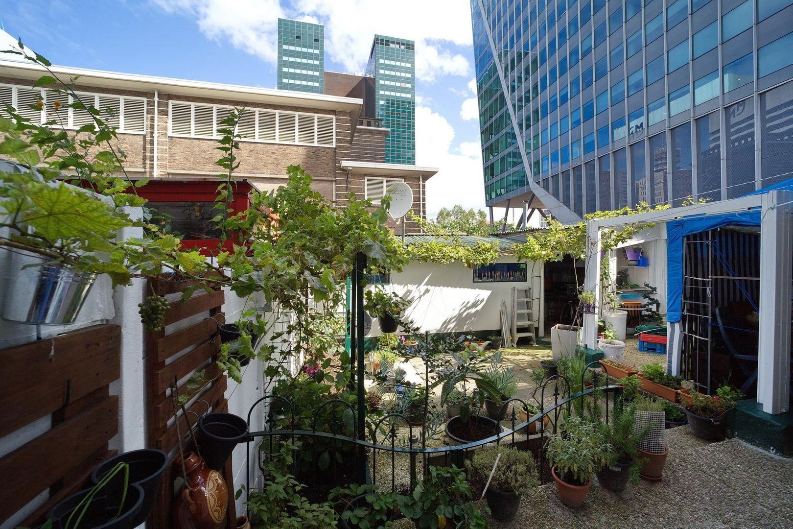 Van den Boschstraat 282, Den Haag foto-22 blur