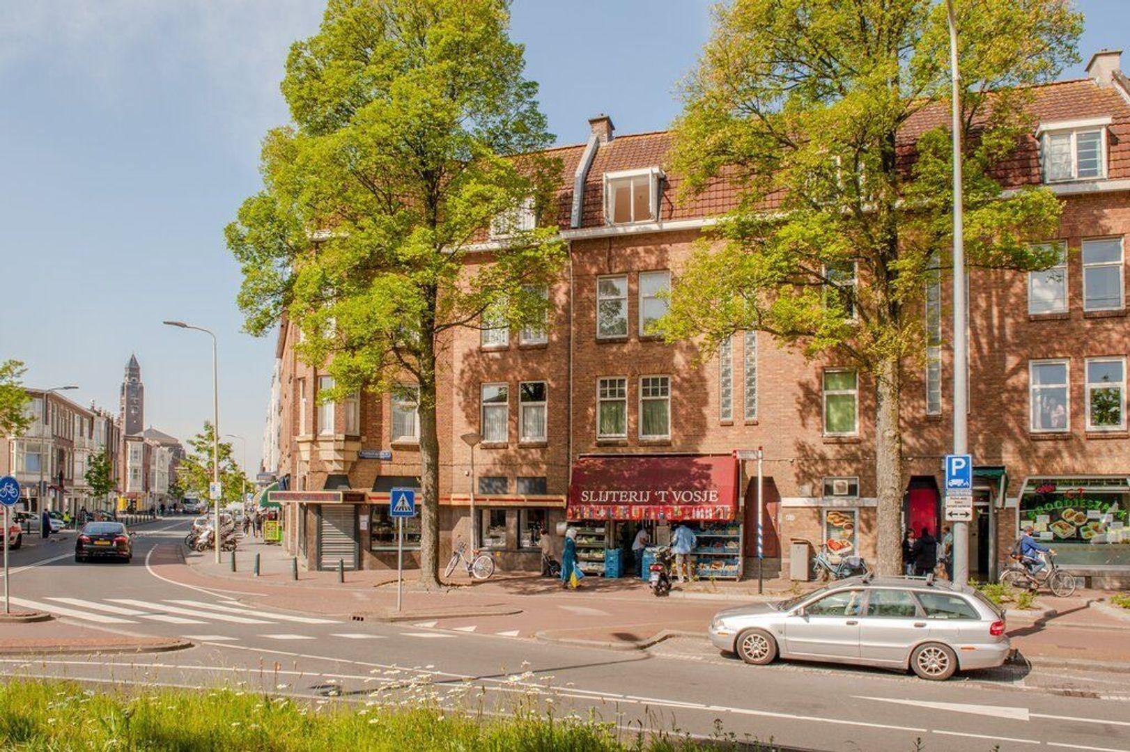 Hobbemaplein 41, Den Haag foto-3 blur