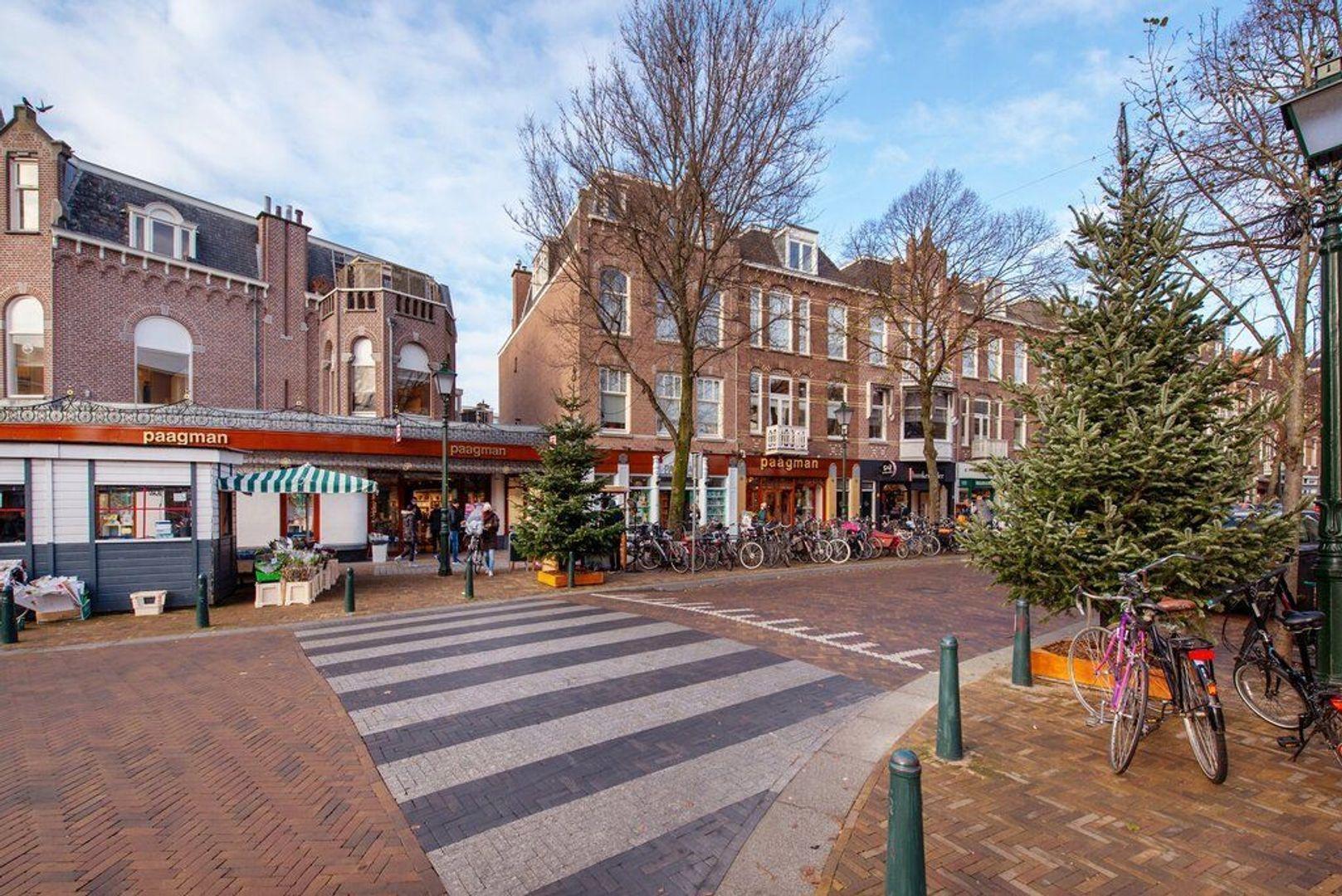 Van Loostraat 144, Den Haag foto-31 blur