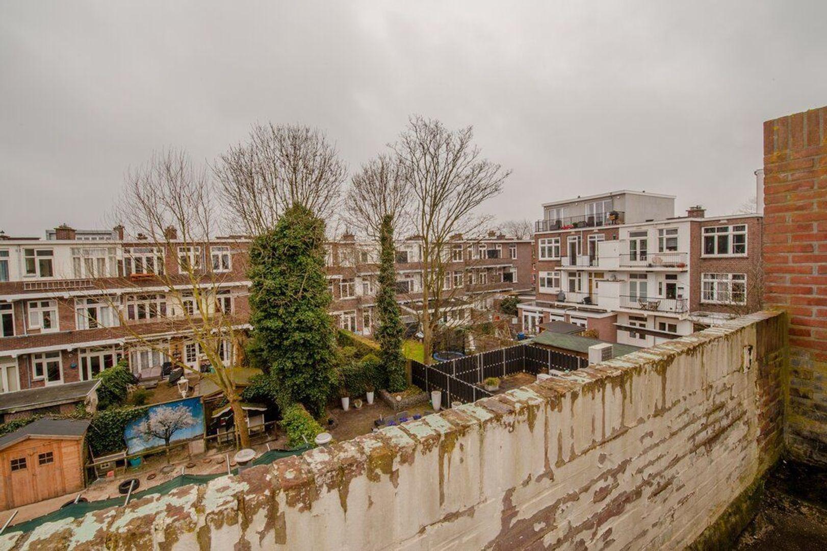 Vlierboomstraat 564, Den Haag foto-10 blur