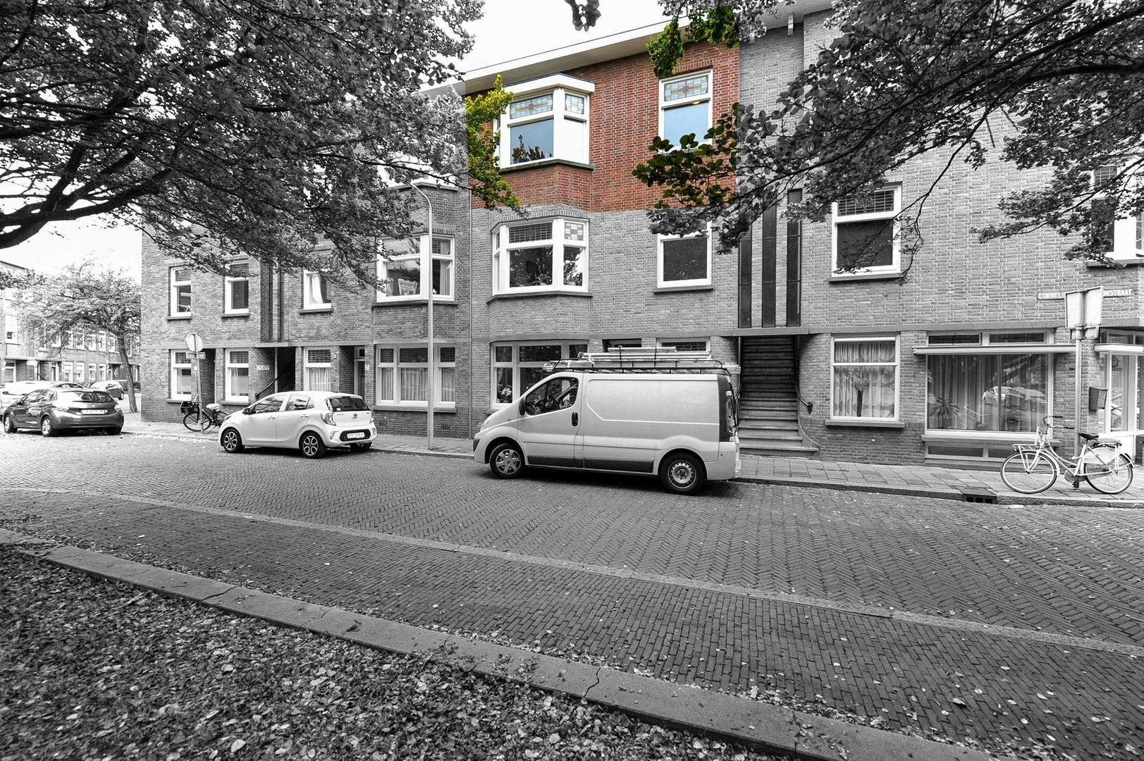 Cornelis van der Lijnstraat 167 -B, Den Haag foto-16 blur