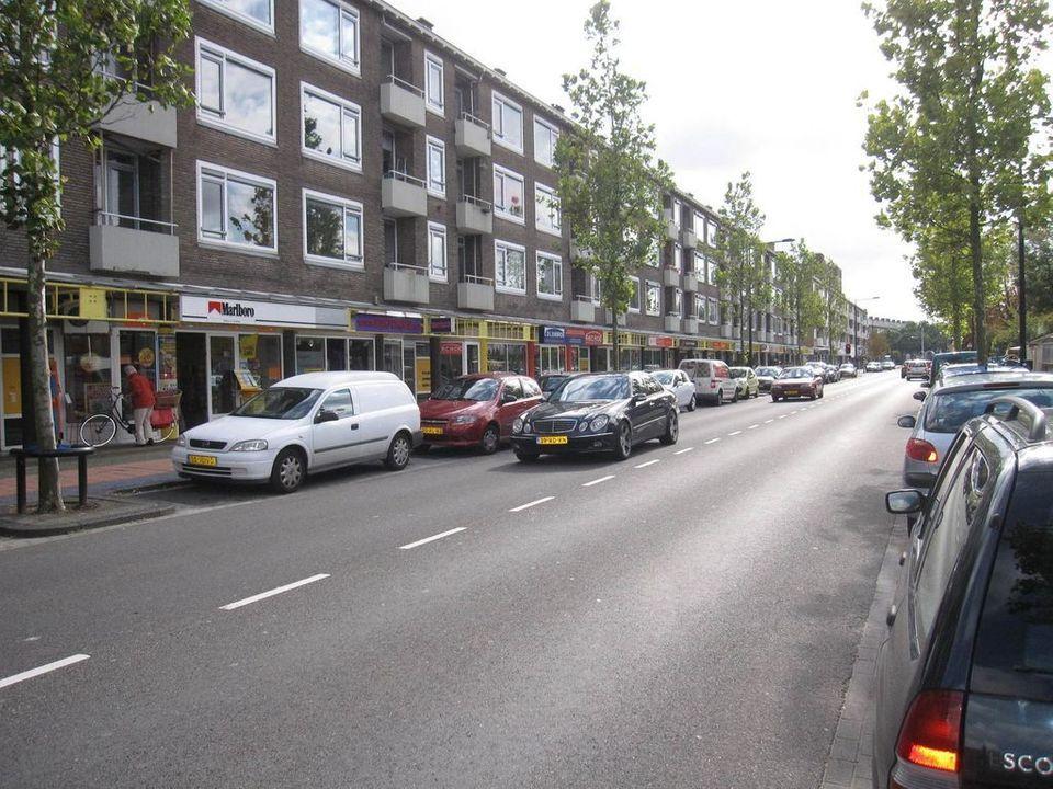 Lindelaan 249, Rijswijk