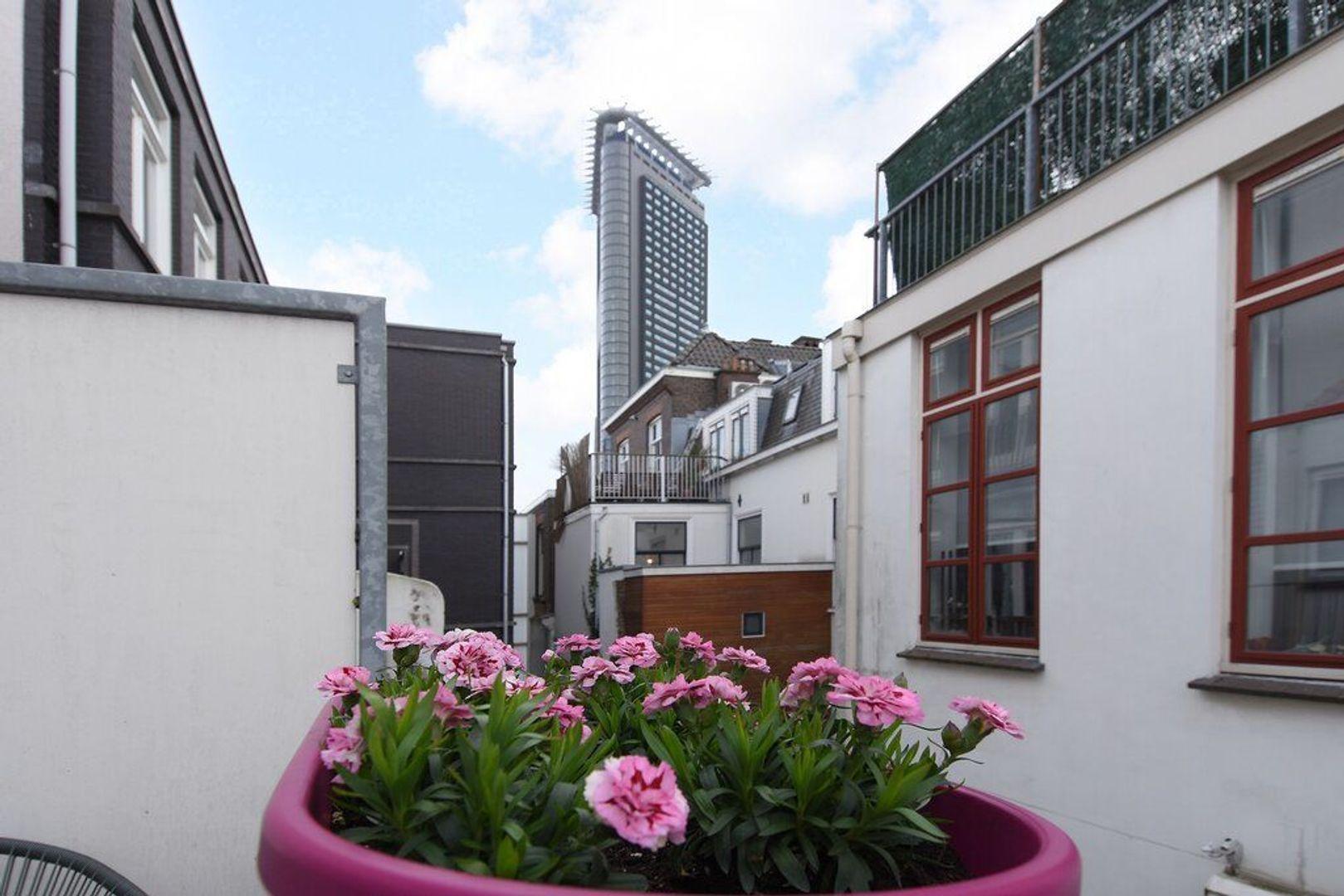 Zieken 179, Den Haag foto-32 blur