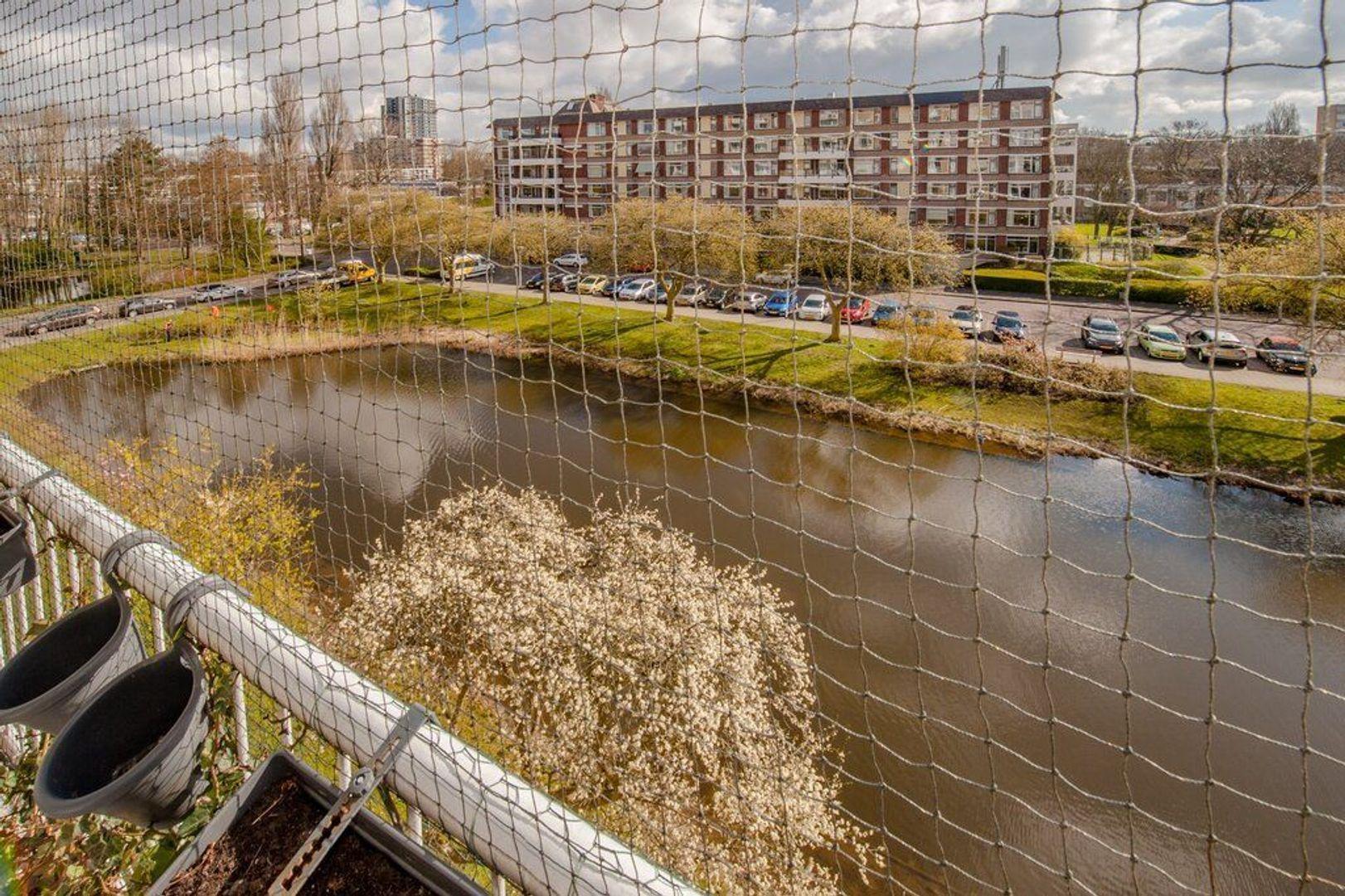 Wagnerplein 104, Leiden foto-30 blur