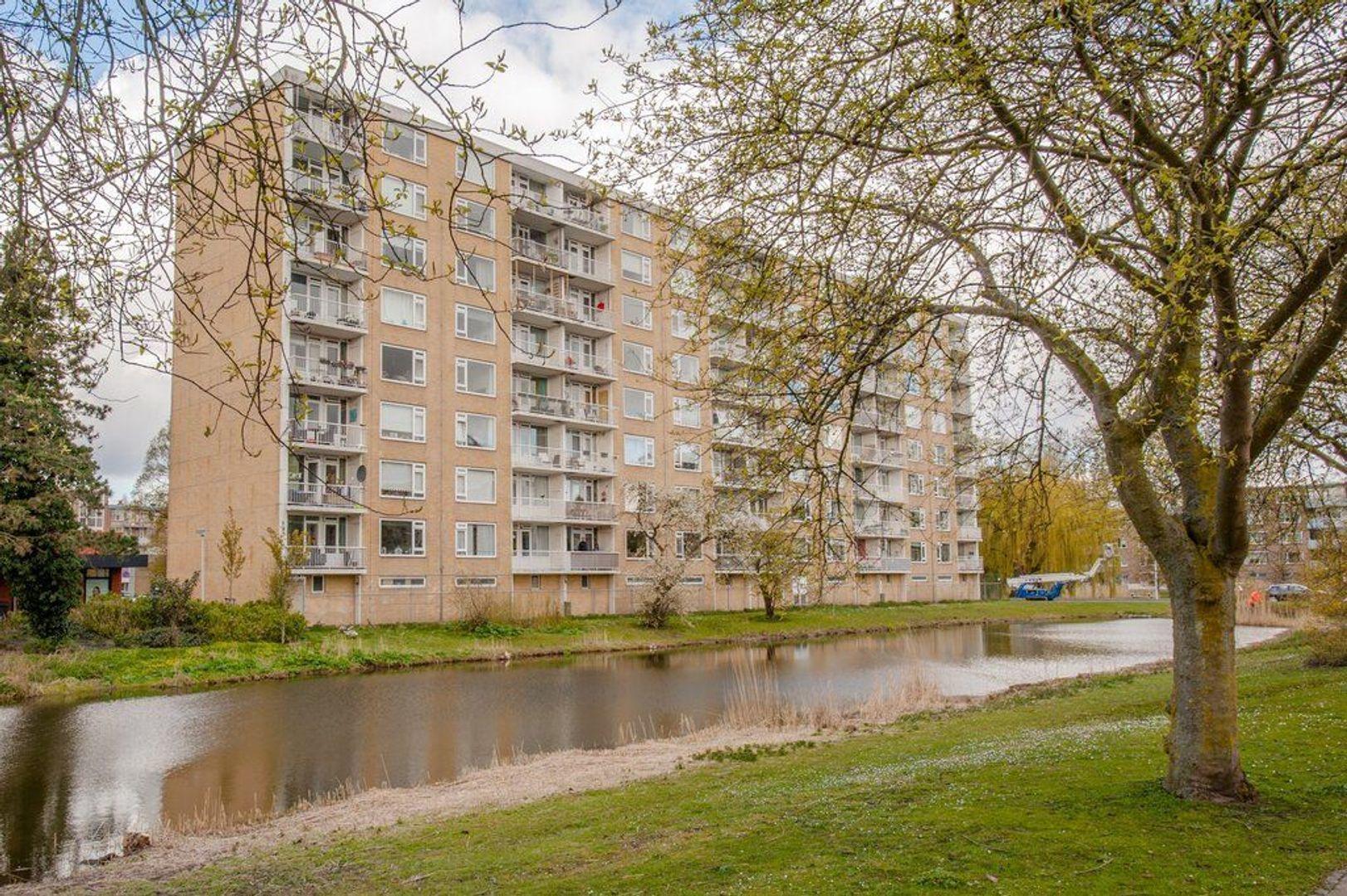 Wagnerplein 104, Leiden foto-39 blur