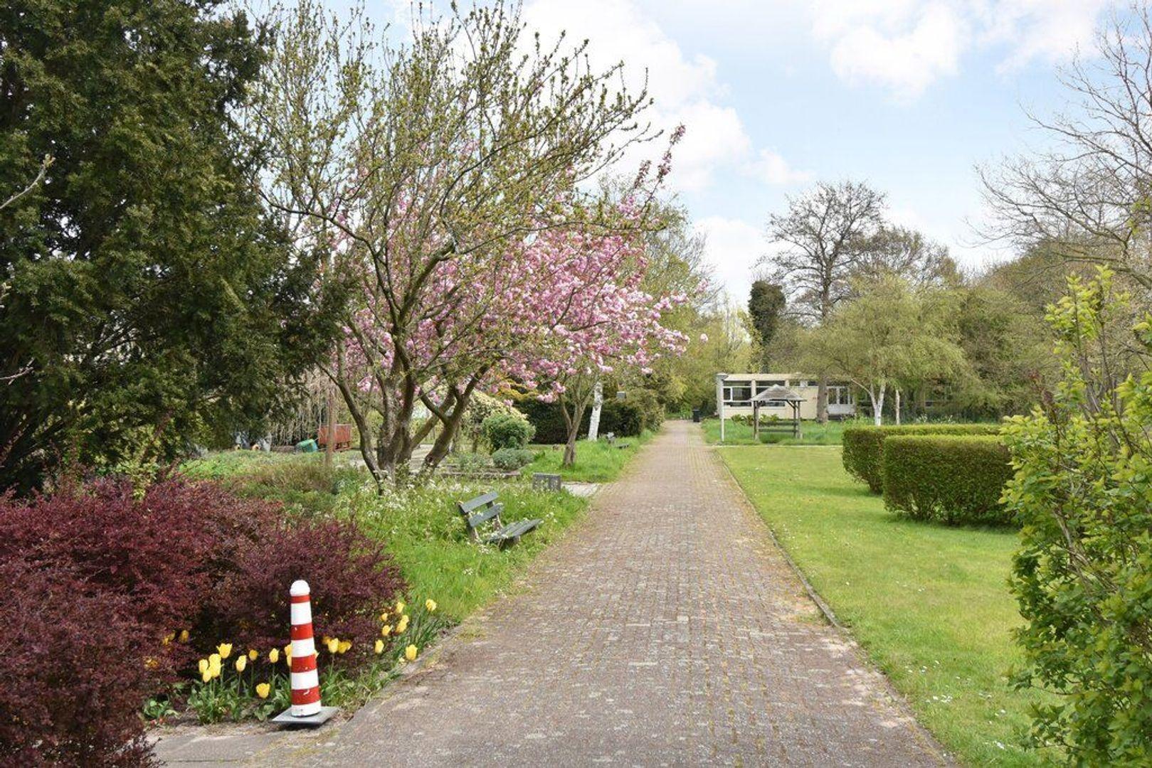 Kornoeljestraat 126, Den Haag foto-43 blur