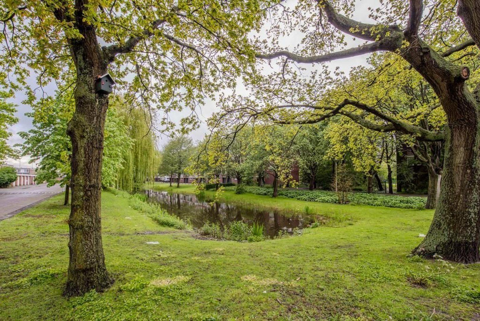 Mahlerstraat 38, Leiden foto-32 blur