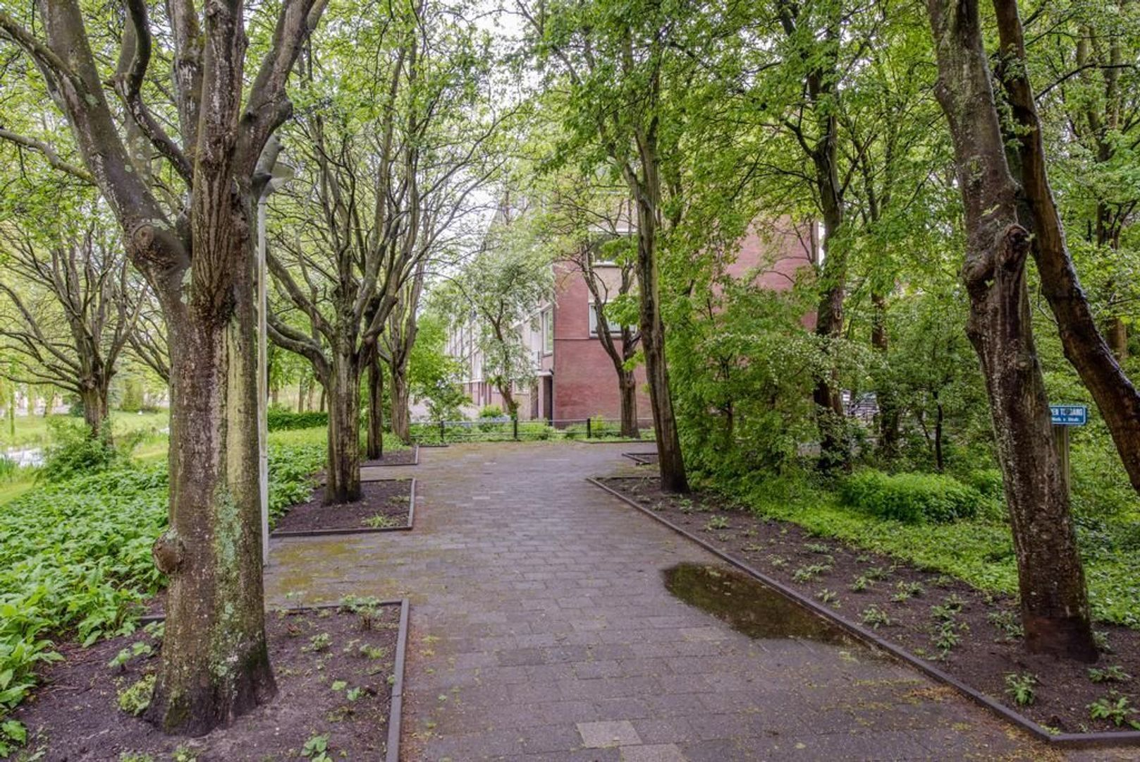 Mahlerstraat 38, Leiden foto-38 blur