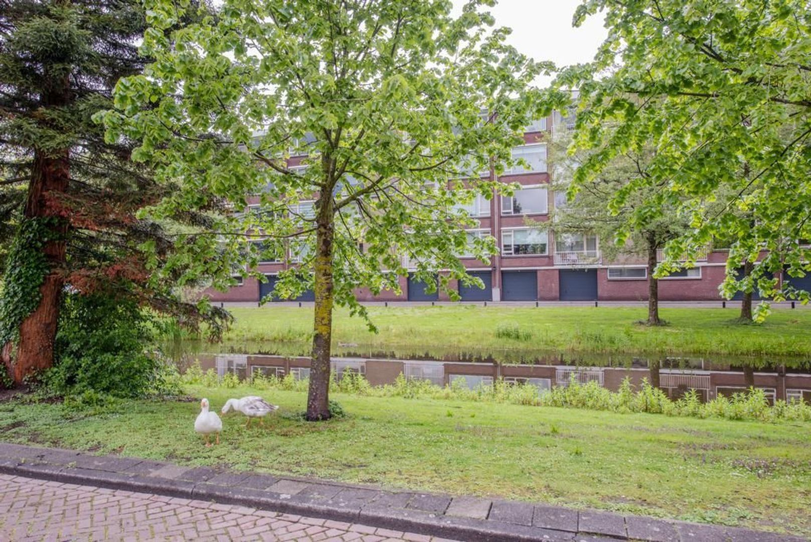 Mahlerstraat 38, Leiden foto-34 blur