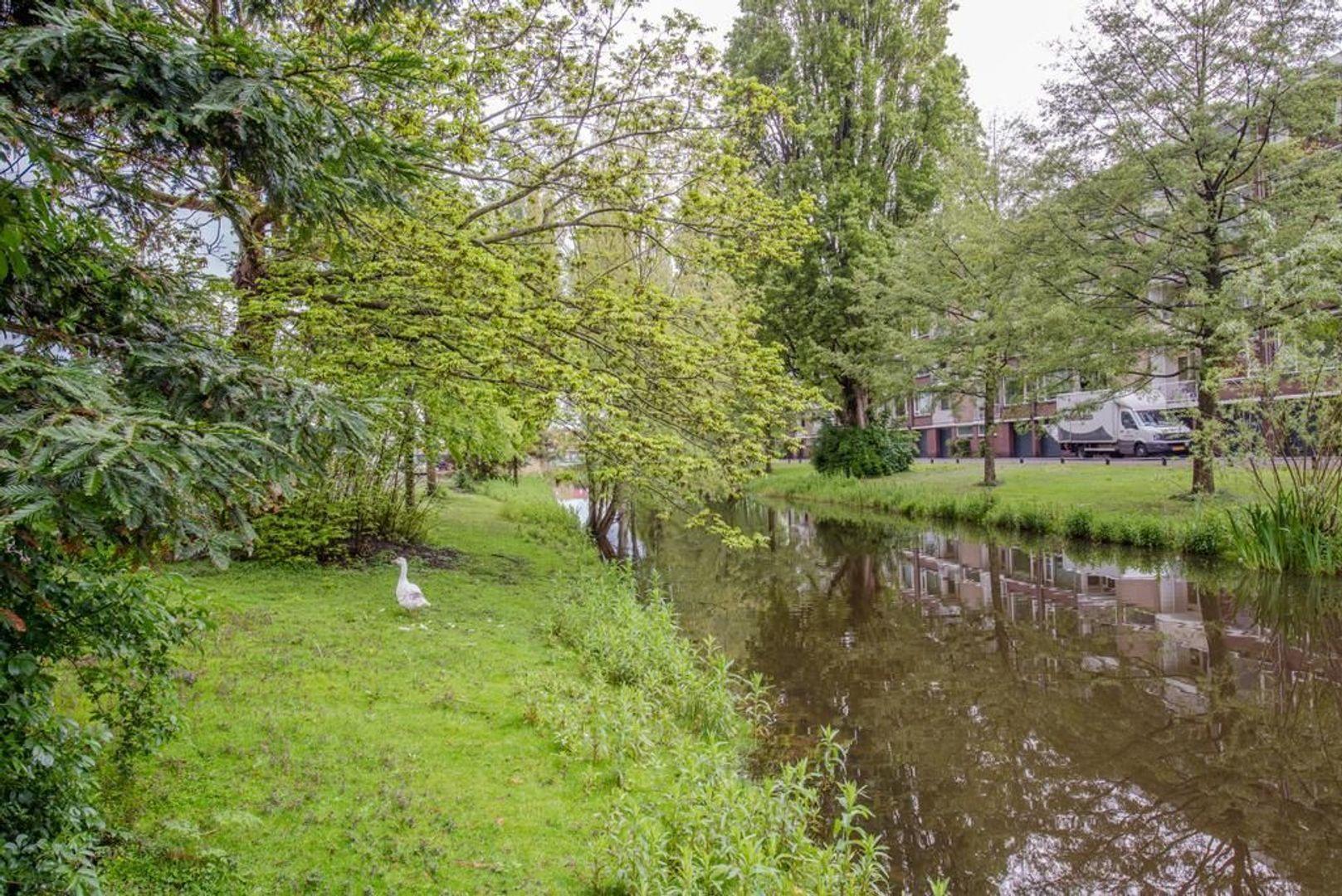 Mahlerstraat 38, Leiden foto-35 blur