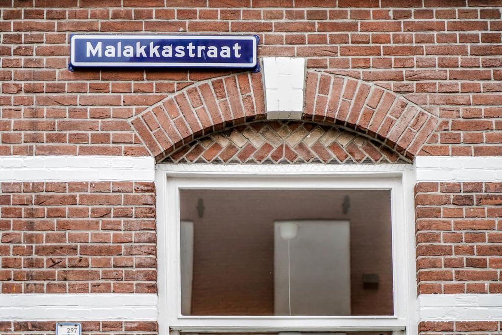 Malakkastraat 38, Den Haag foto-53 blur