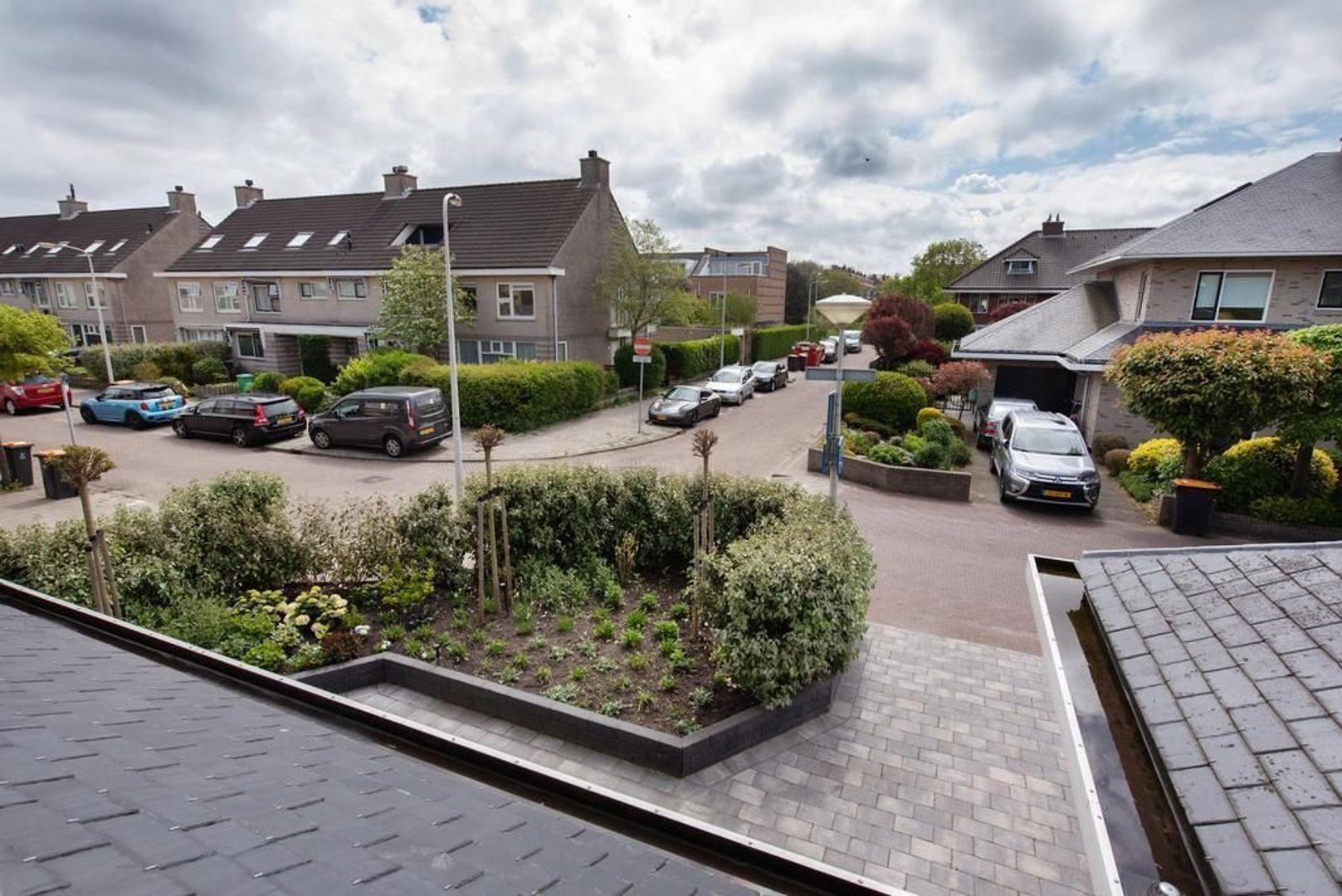Driedistellaan 3, Den Haag foto-53 blur