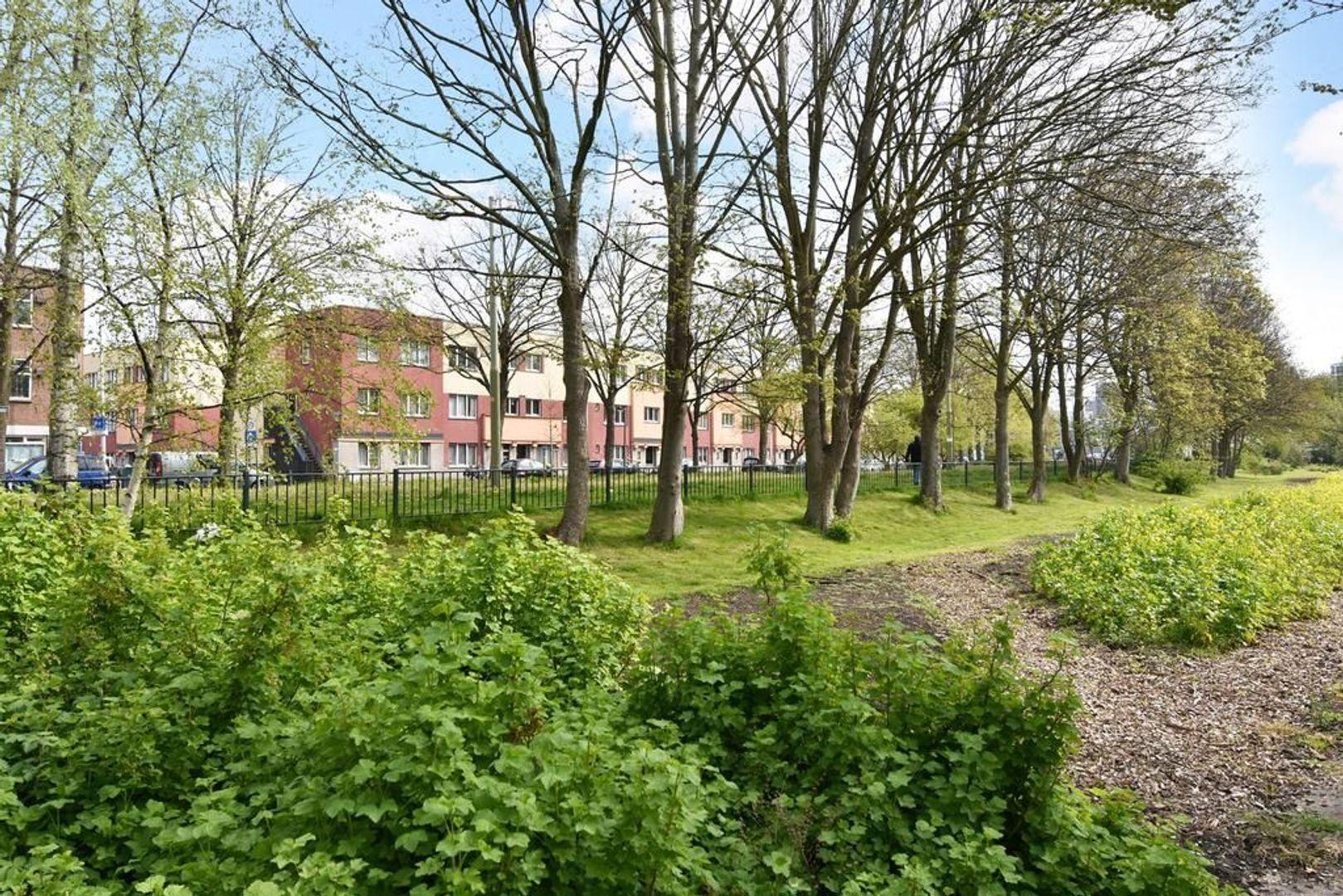Groenteweg 58, Den Haag foto-3 blur