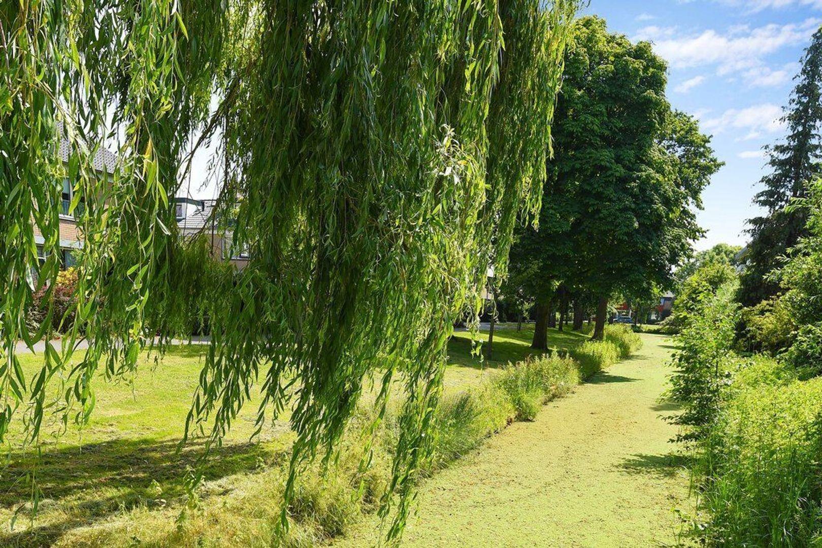 Rozeveldlaan 4, Wassenaar foto-33 blur