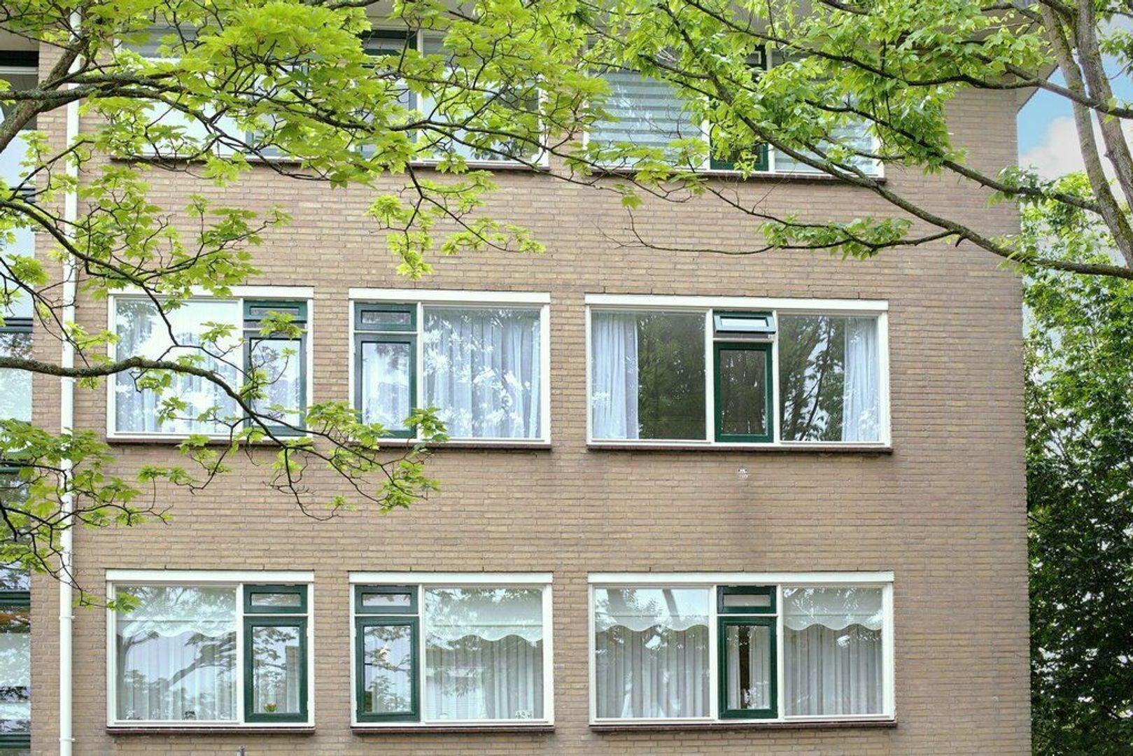 Rozeveldlaan 4, Wassenaar foto-28 blur