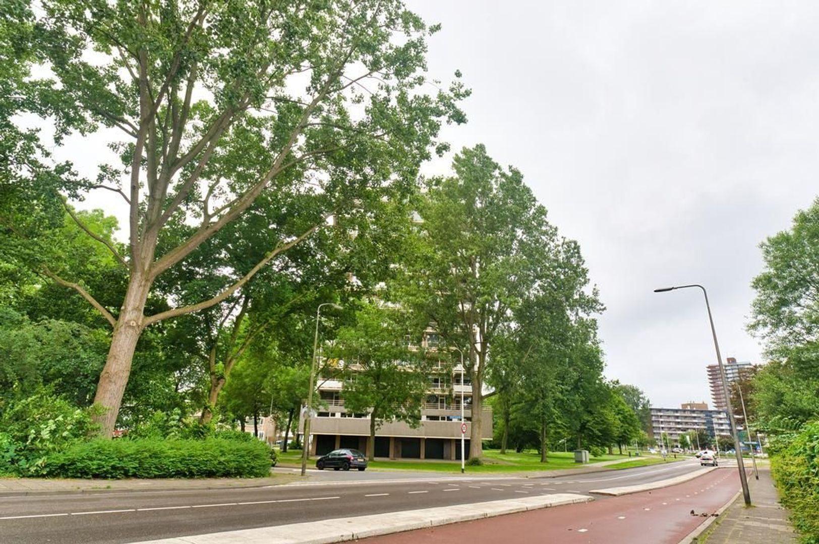 Graaf Janstraat 151, Zoetermeer foto-31 blur