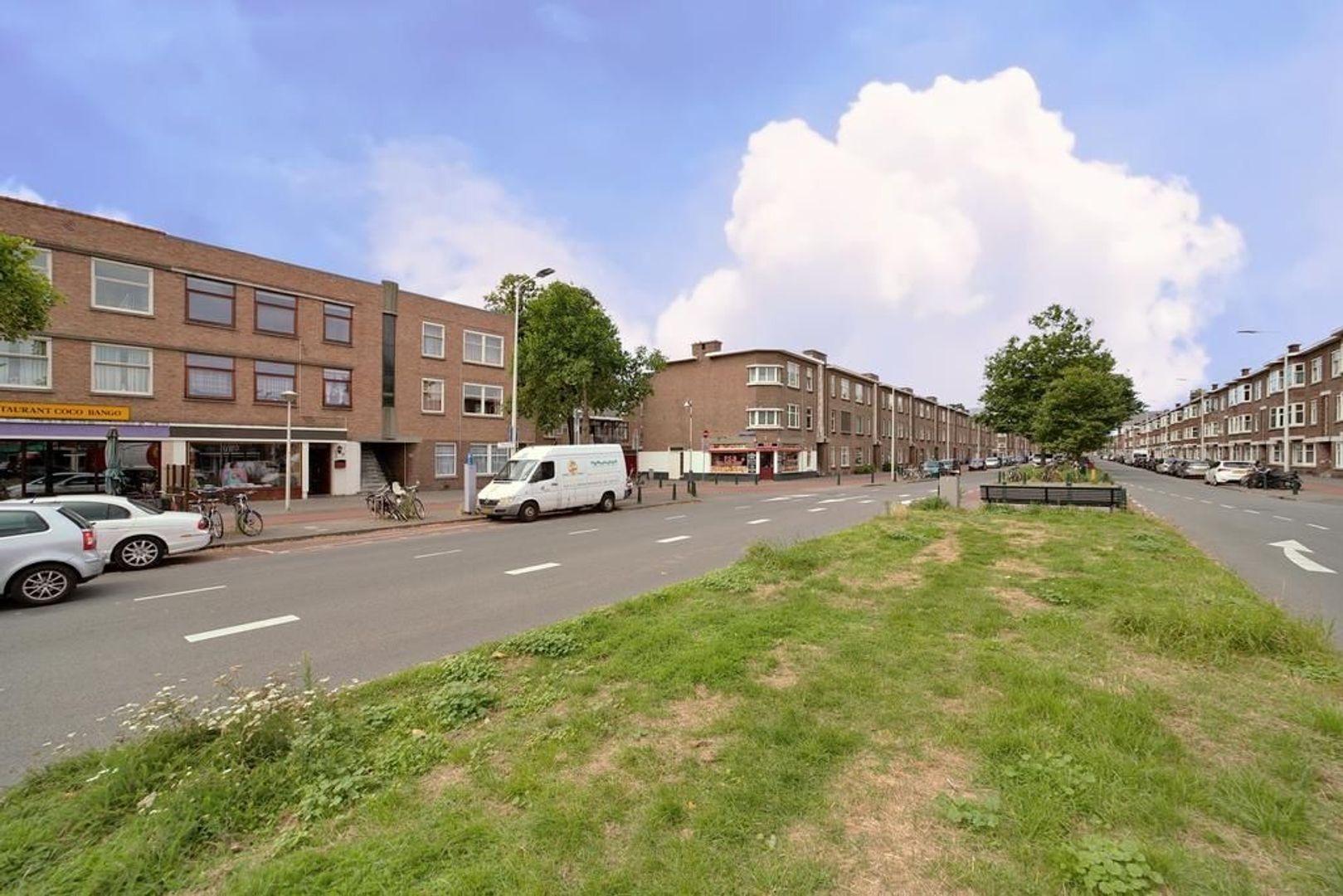 Zuiderparklaan 237, Den Haag foto-20 blur