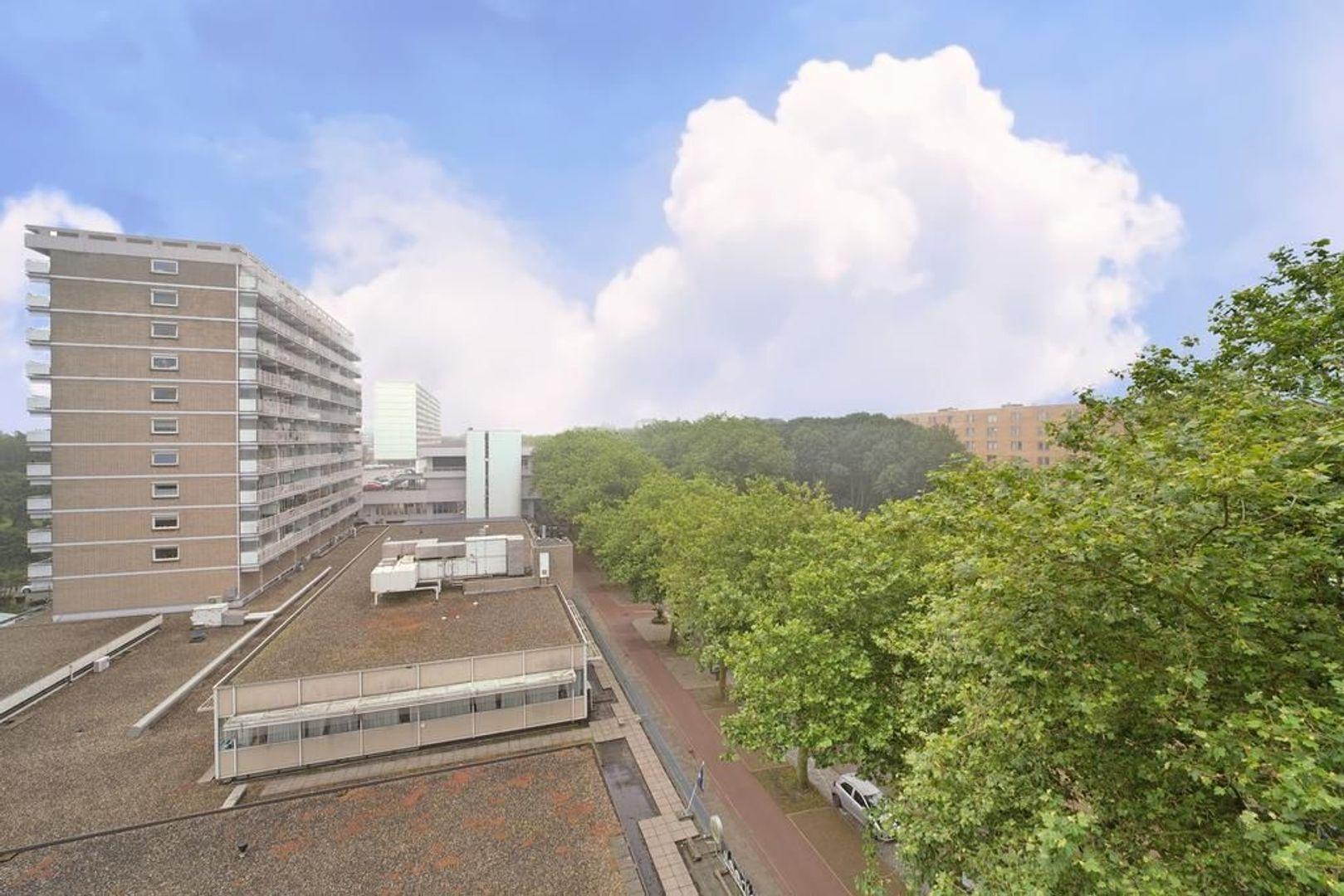 Granaathorst 301, Den Haag foto-15 blur
