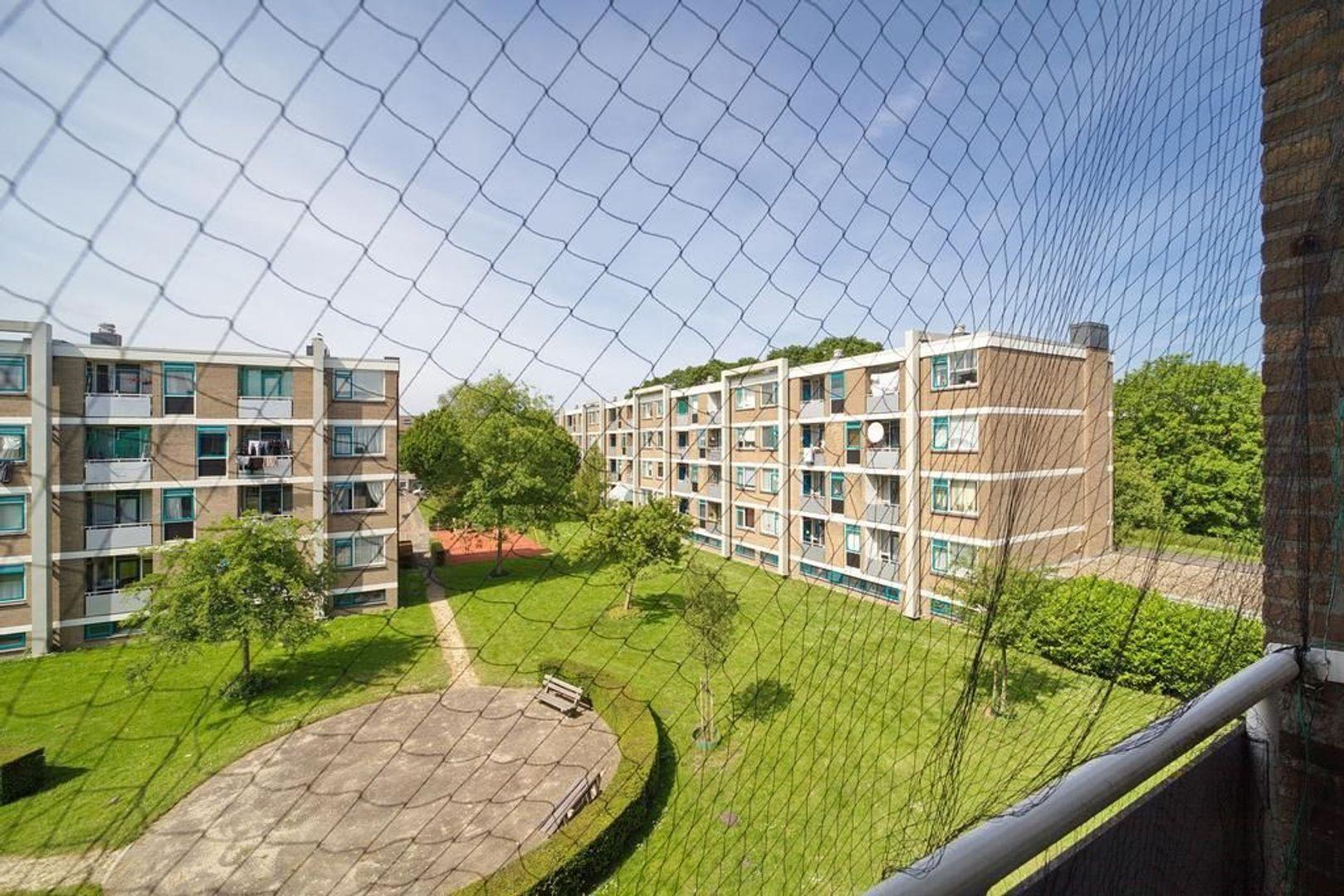 Reuvenslaan 149, Voorburg foto-19 blur