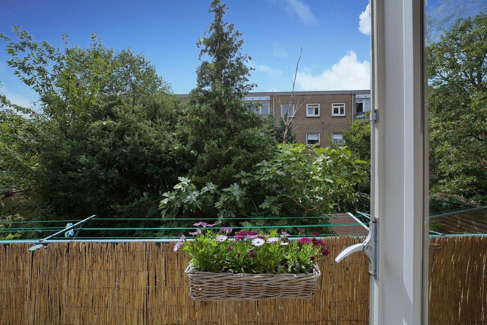 De Moucheronstraat 105, Den Haag foto-15 blur