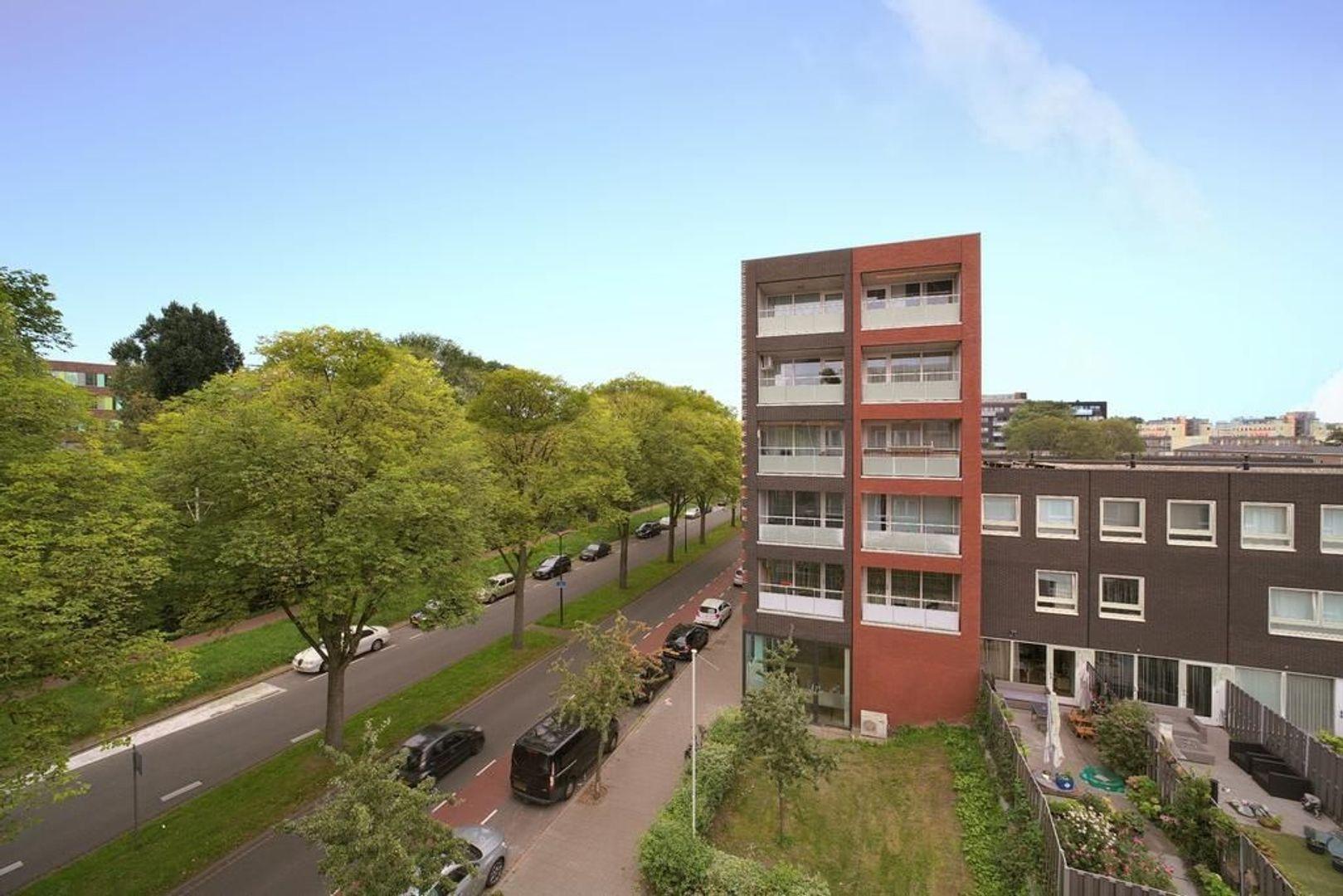 Melis Stokelaan 1982, Den Haag foto-1 blur