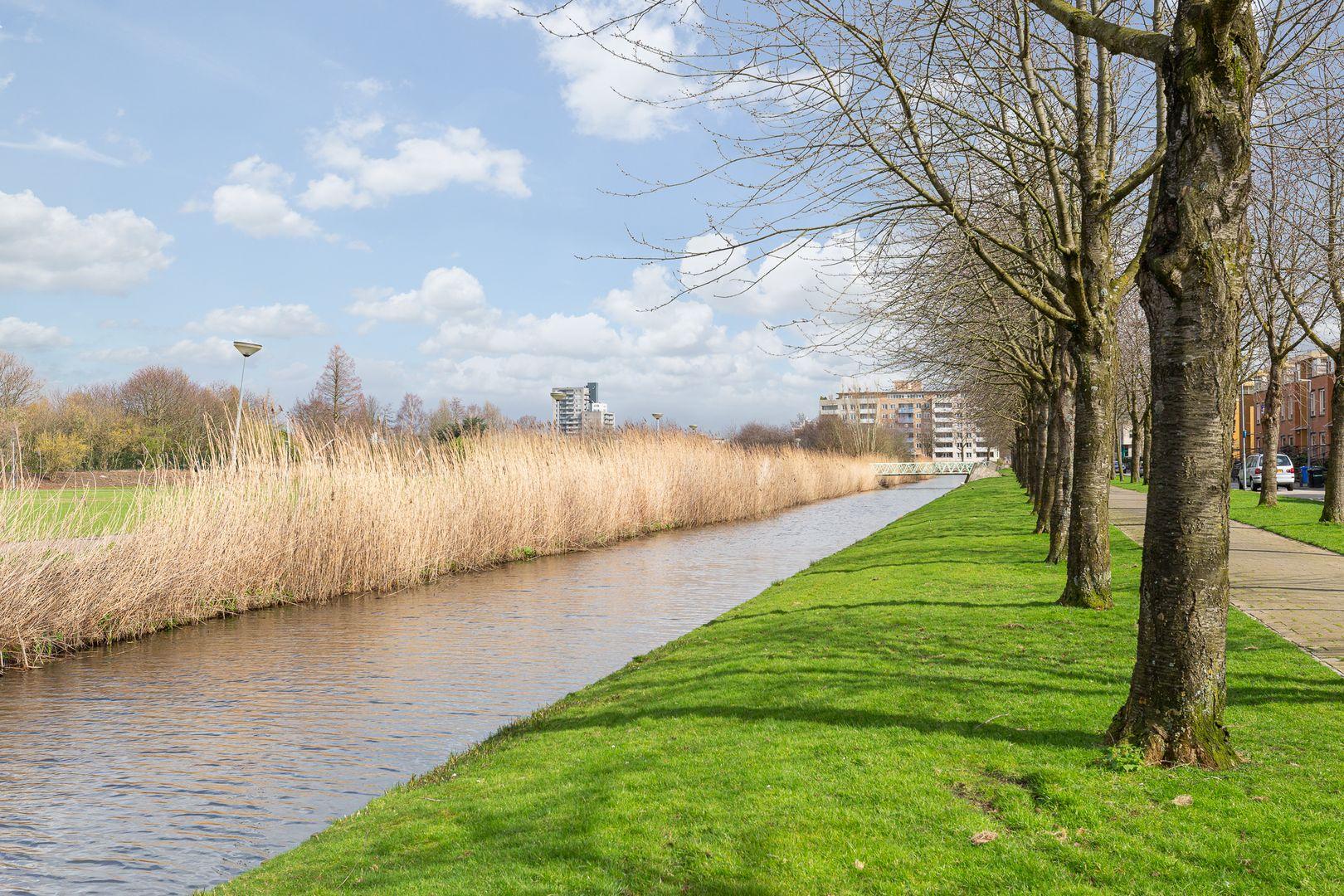Hattasingel 110, Rotterdam foto-20 blur