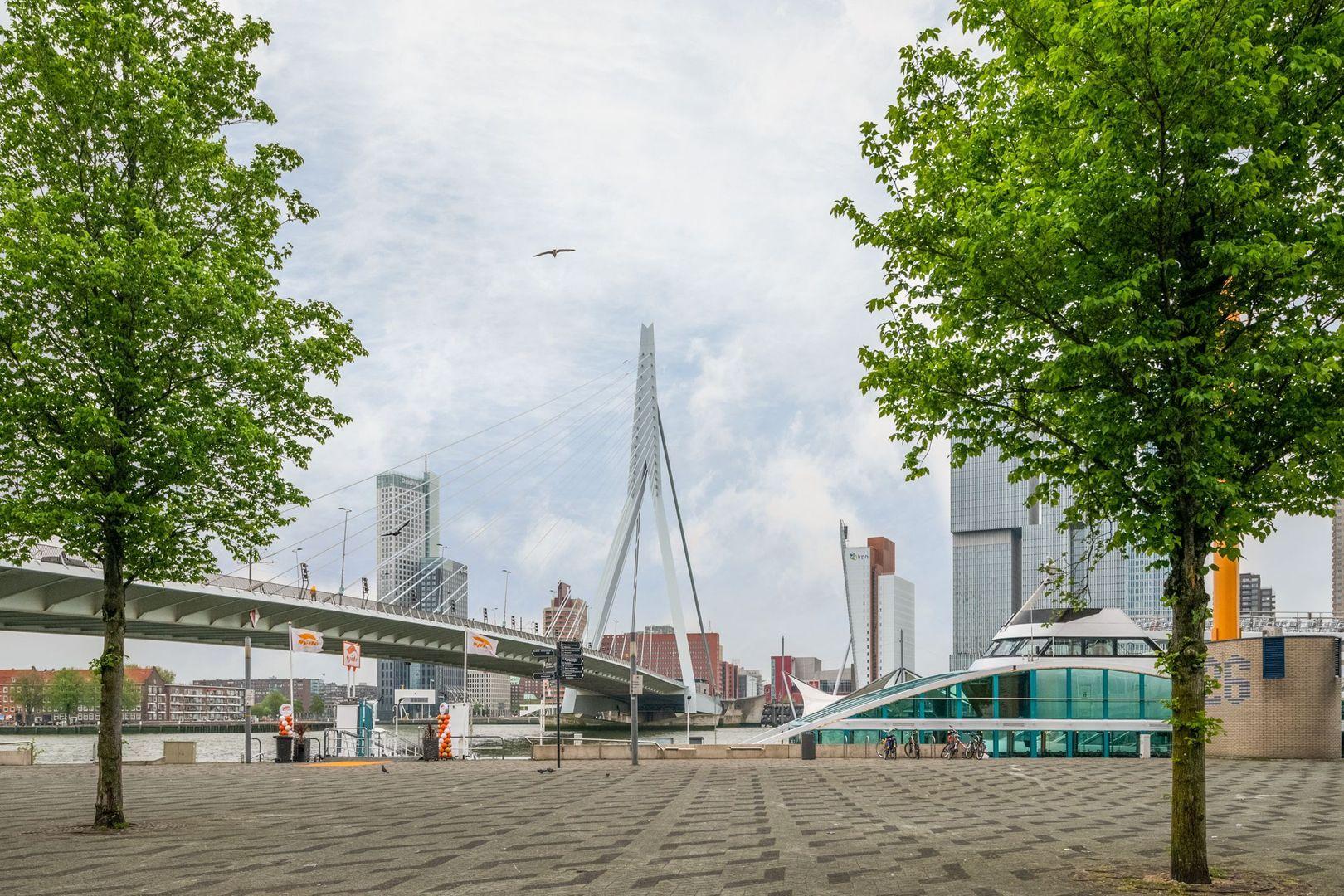 Westerstraat 20 b, Rotterdam foto-21 blur