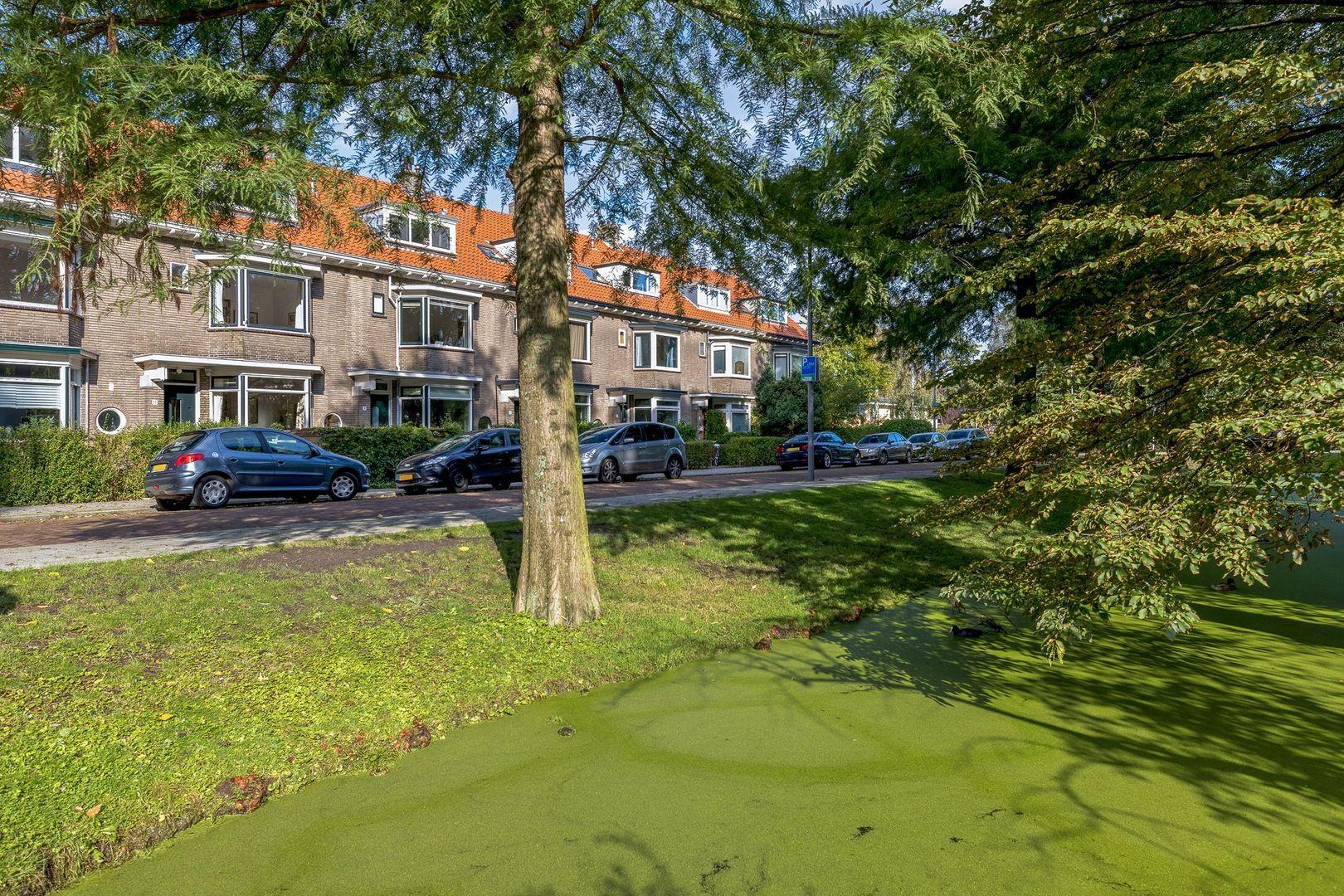 's-Gravensingel 11, Rotterdam foto-22 blur