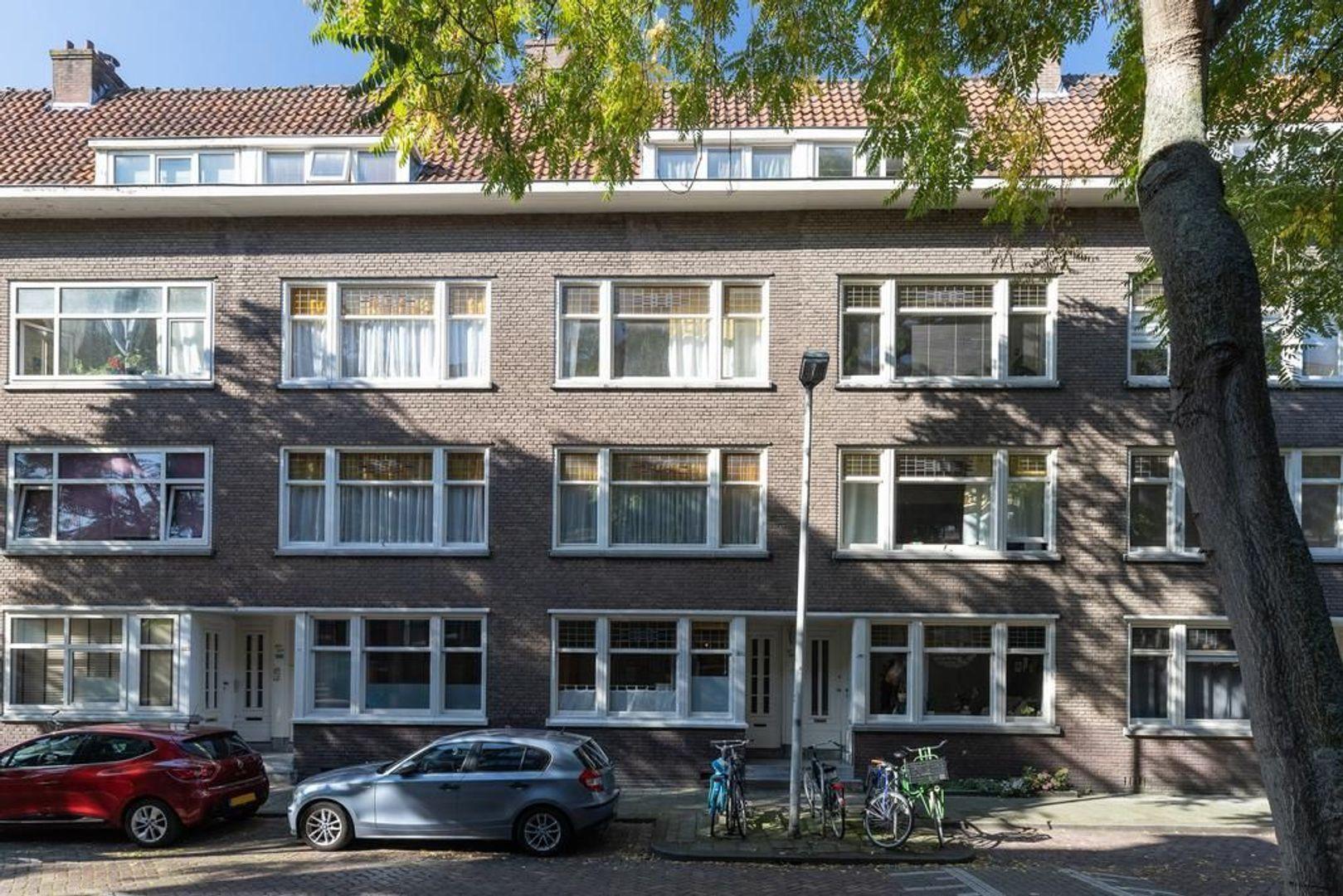 Borgesiusstraat 41 b, Rotterdam foto-30 blur