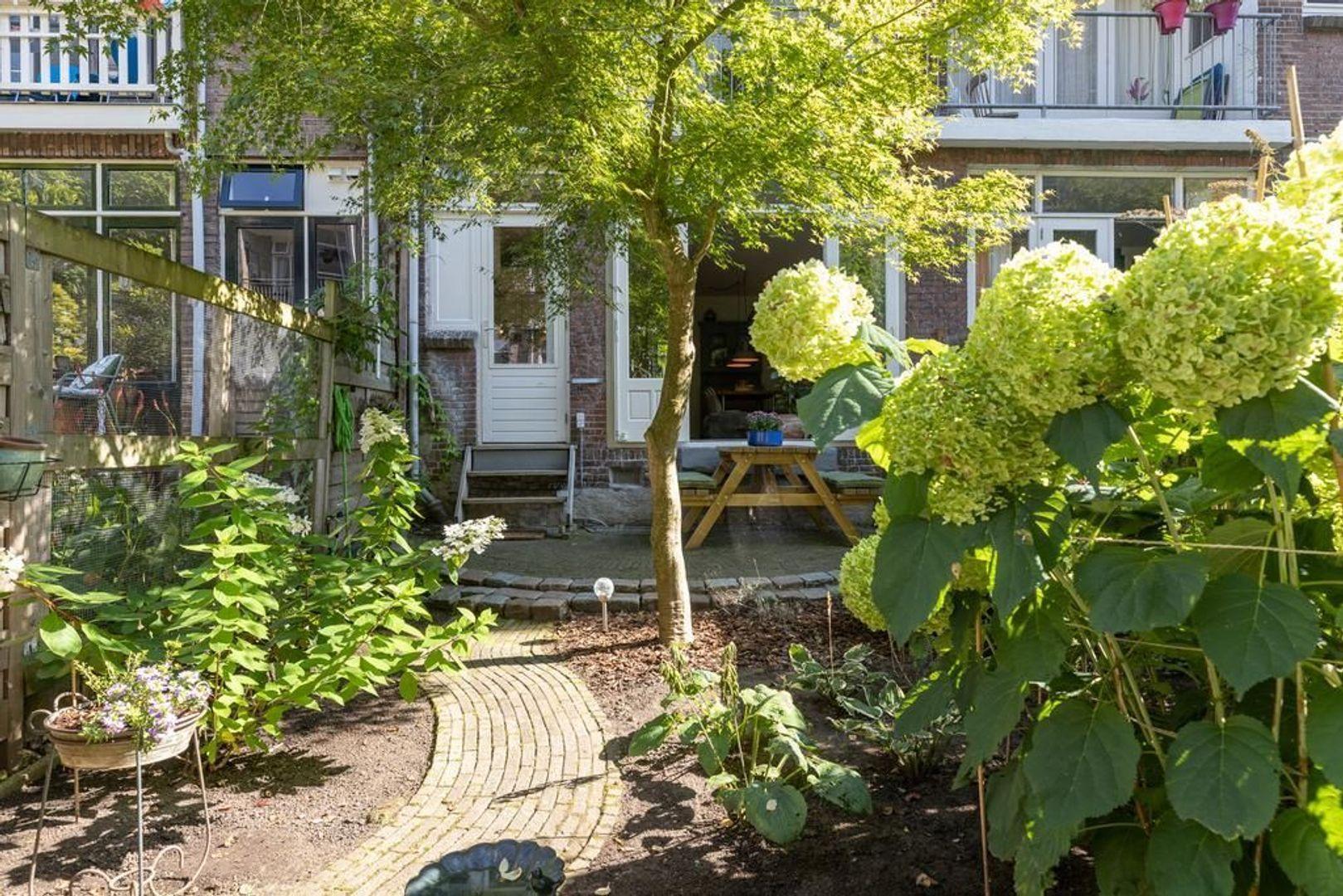 Borgesiusstraat 41 b, Rotterdam foto-25 blur