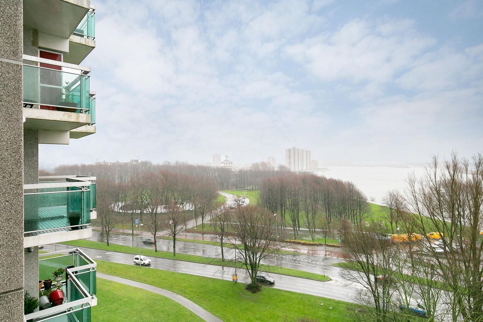 Oostmaaslaan 558, Rotterdam foto-19 blur