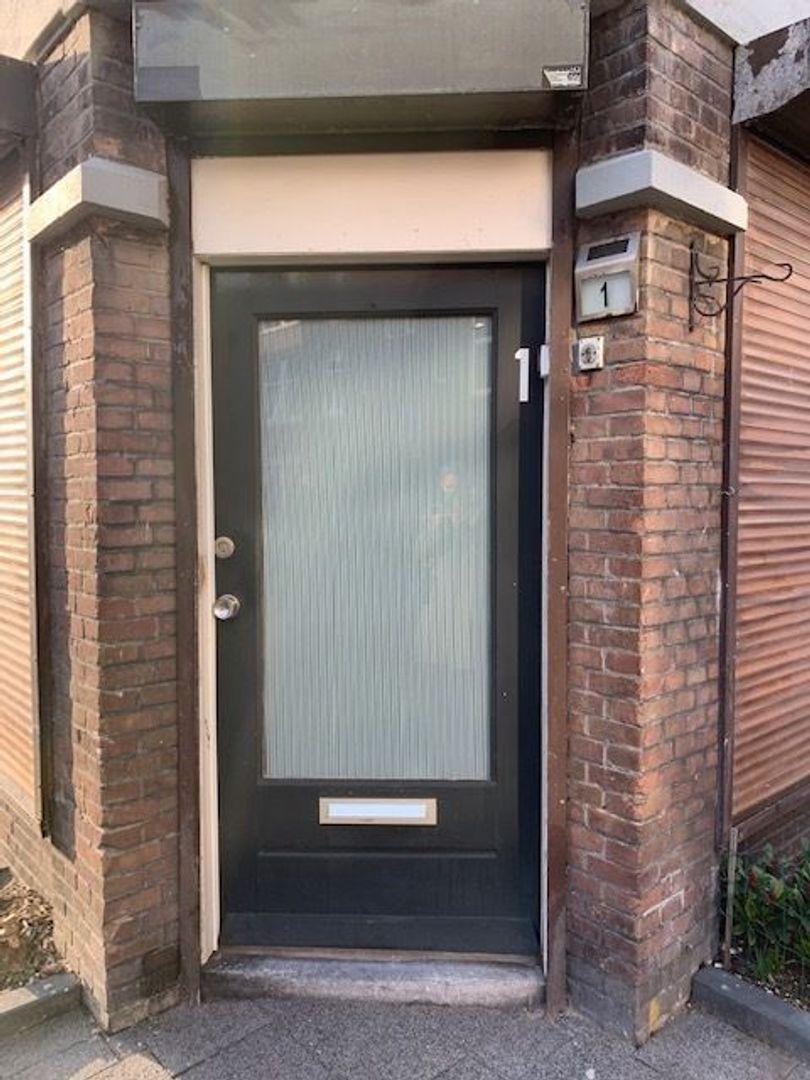 Spiraeastraat 1, Den Haag foto-1 blur