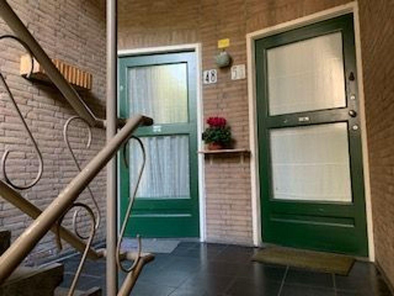 Cornelis Houtmanstraat 48, Den Haag foto-5 blur