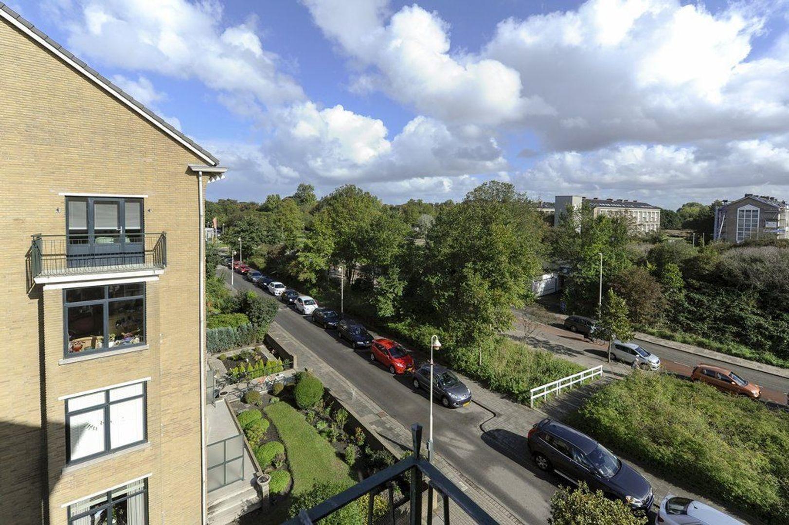 De Savornin Lohmanlaan 116, Den Haag foto-24 blur