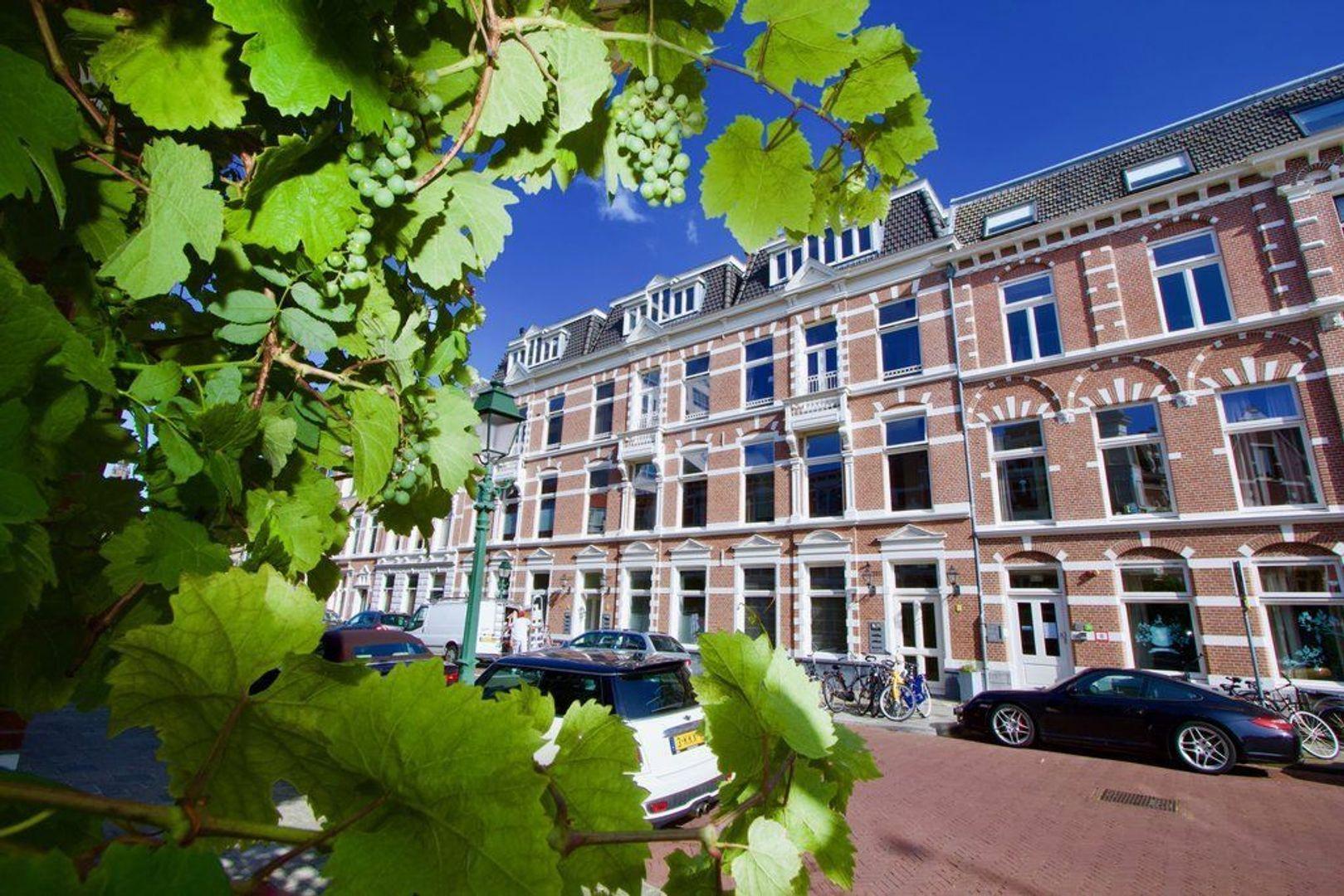 1e Sweelinckstraat 24 c, Den Haag foto-1 blur