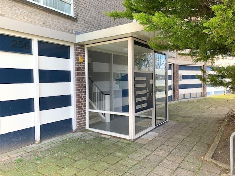 Smaragdhorst 272, Den Haag foto-4 blur