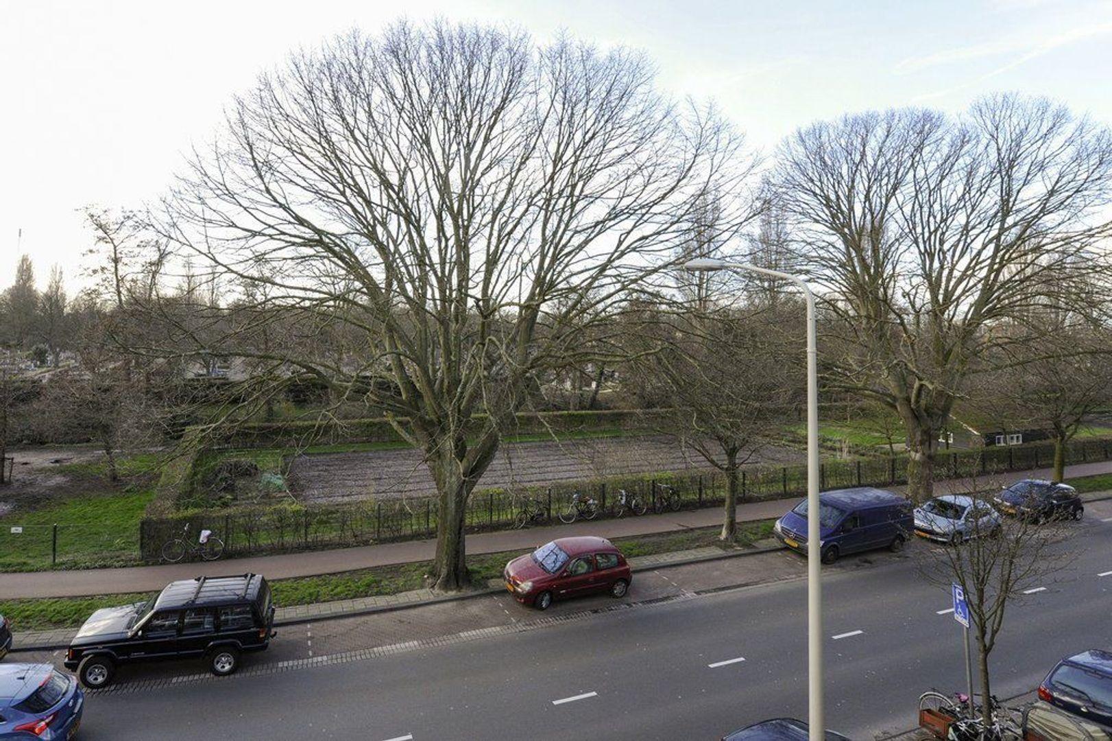 Kamperfoeliestraat 127, Den Haag foto-2 blur